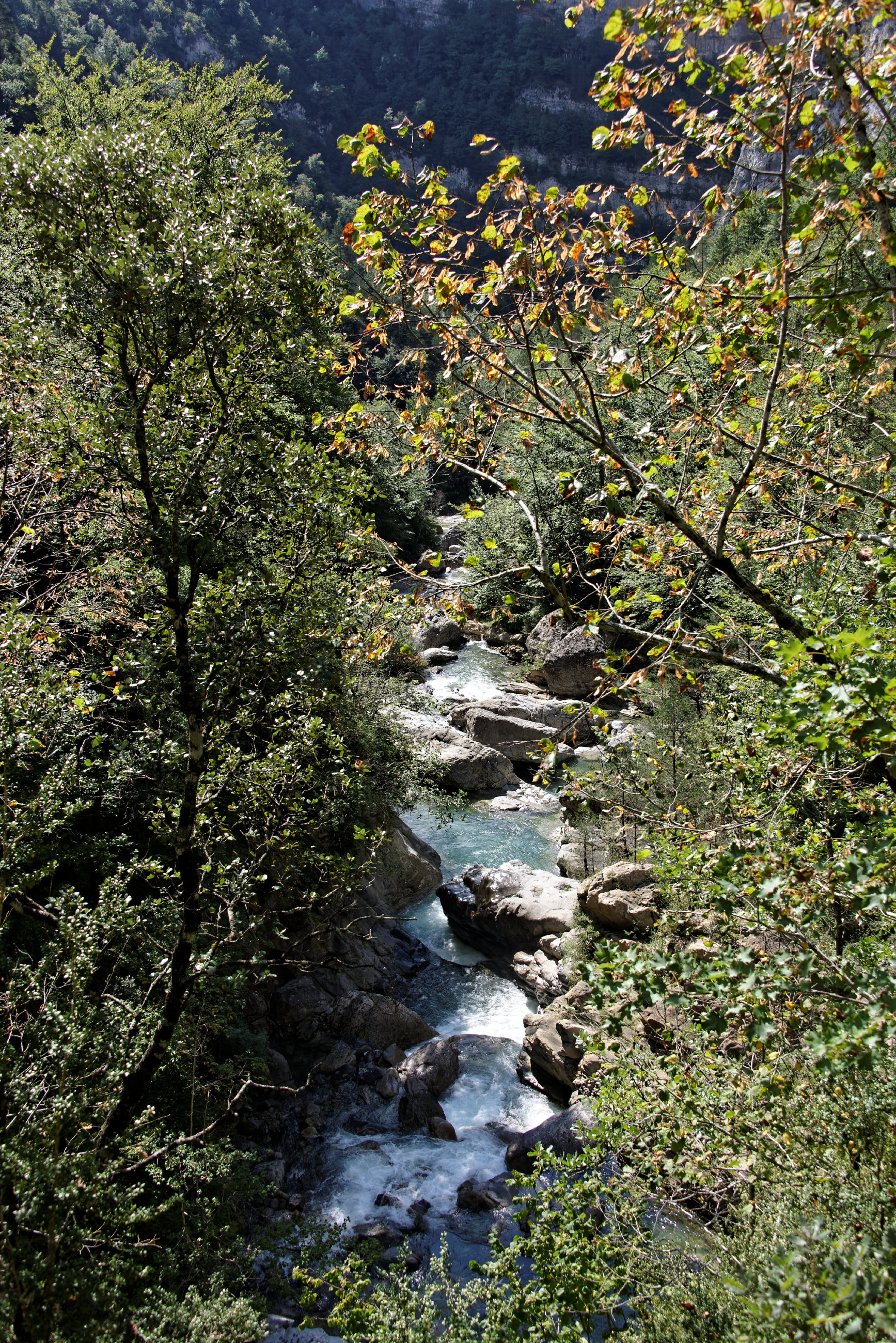 (7828) Canyon d'Anisclo  (Sobrarbe)