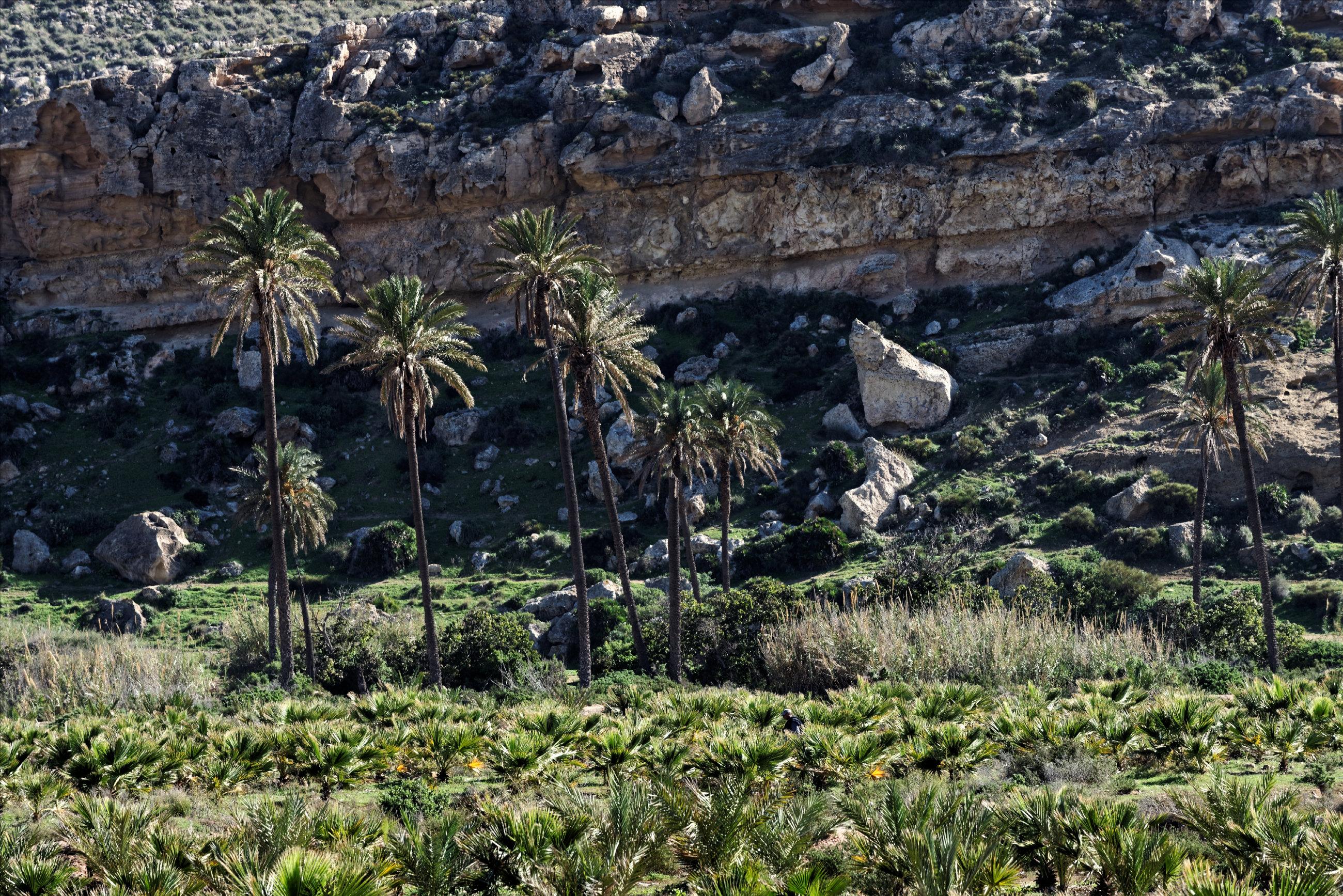 151106-Playa el Playazo (56)
