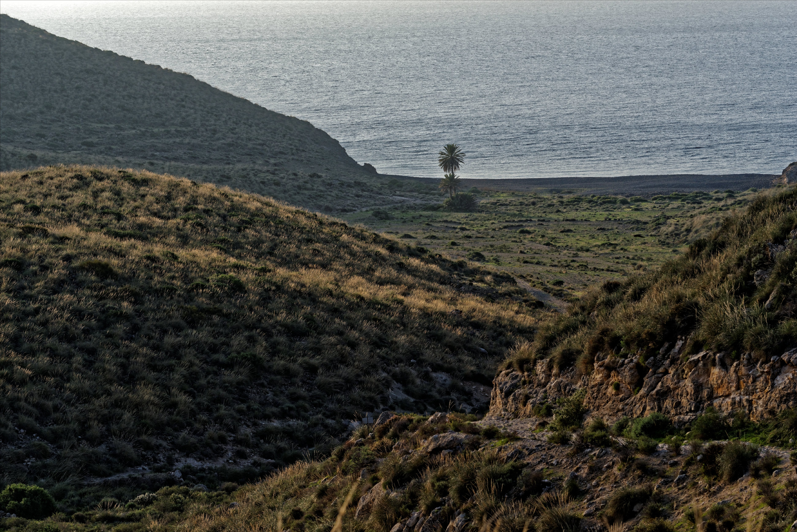 151107-Playa Cala de Carnaje (2)