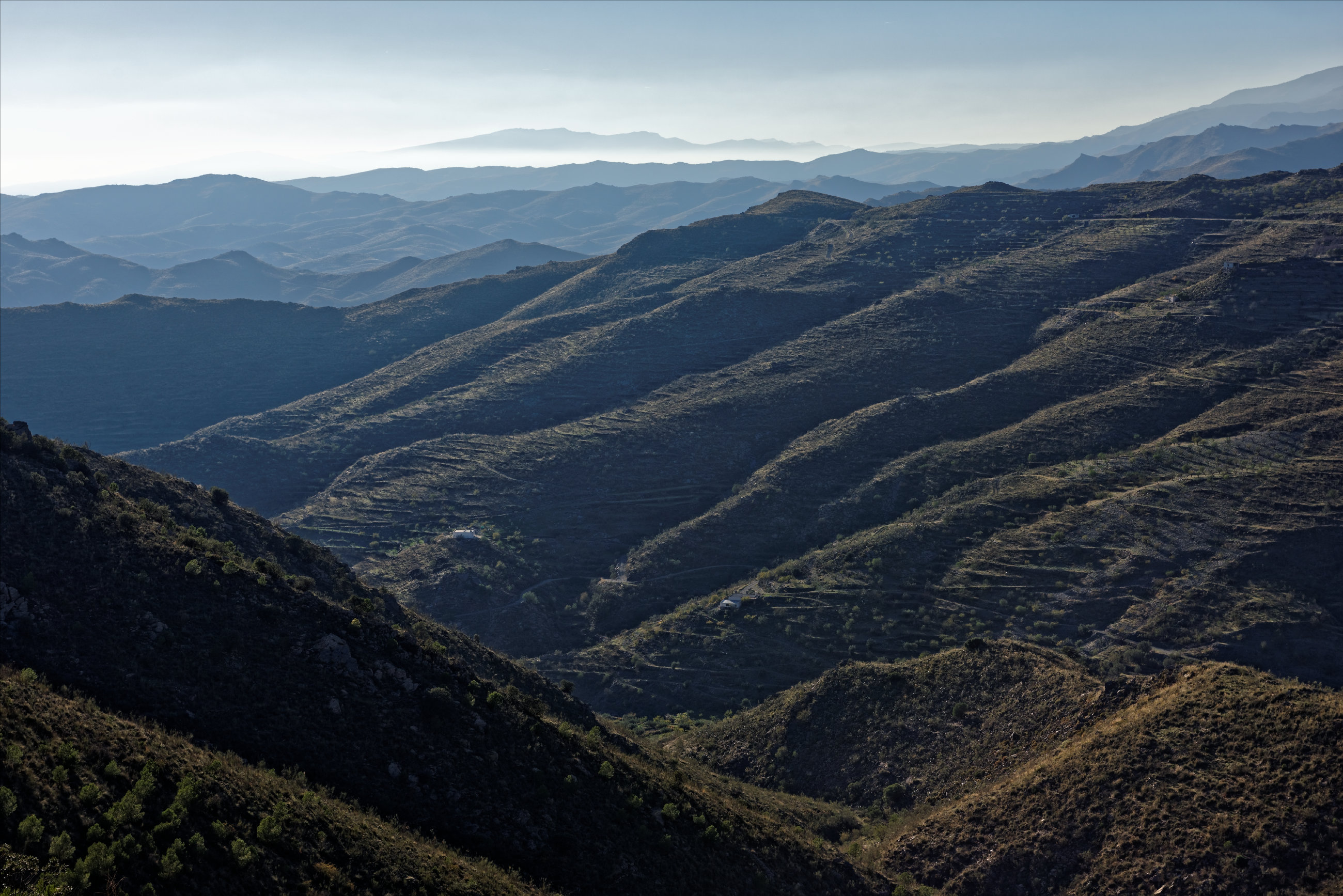 151107-Sierra de los Filabres (202)