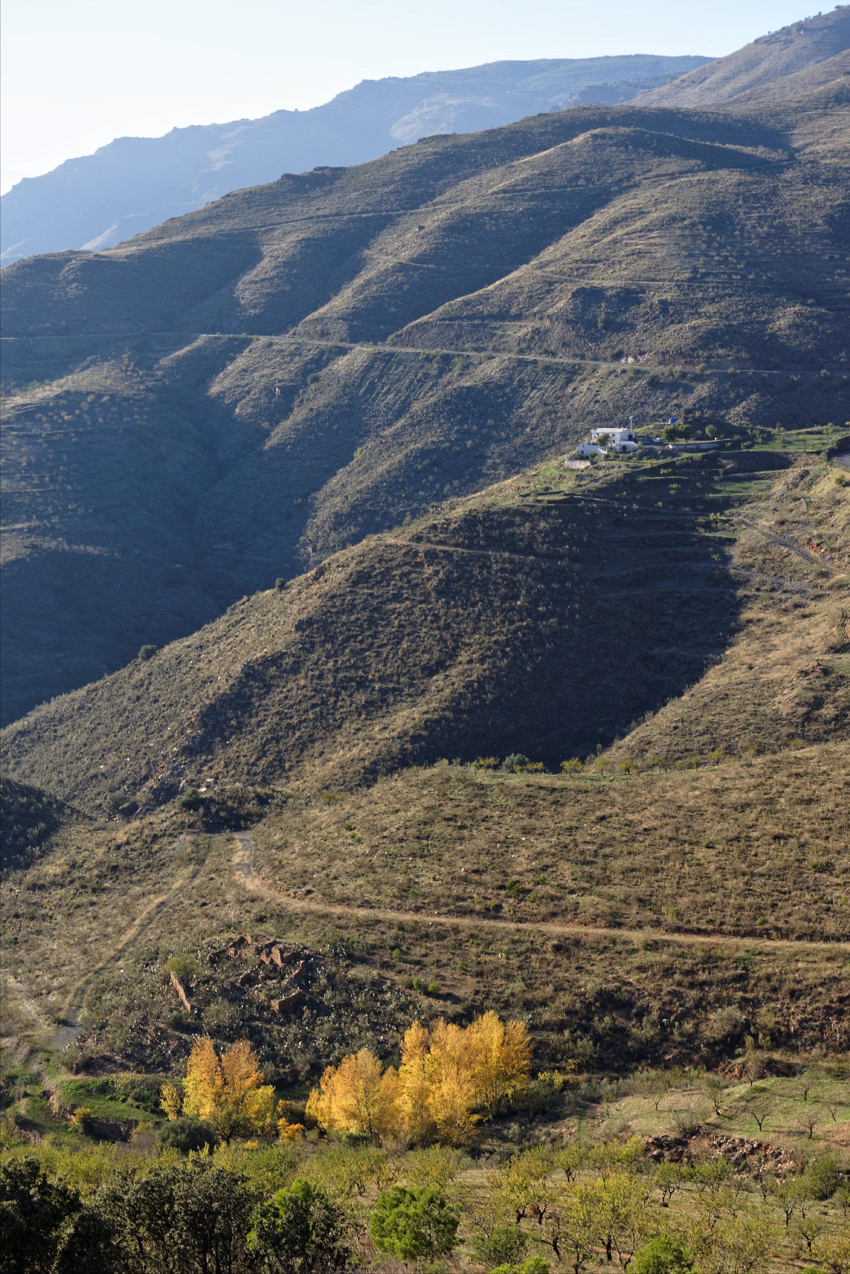 151107-Sierra de los Filabres (203)