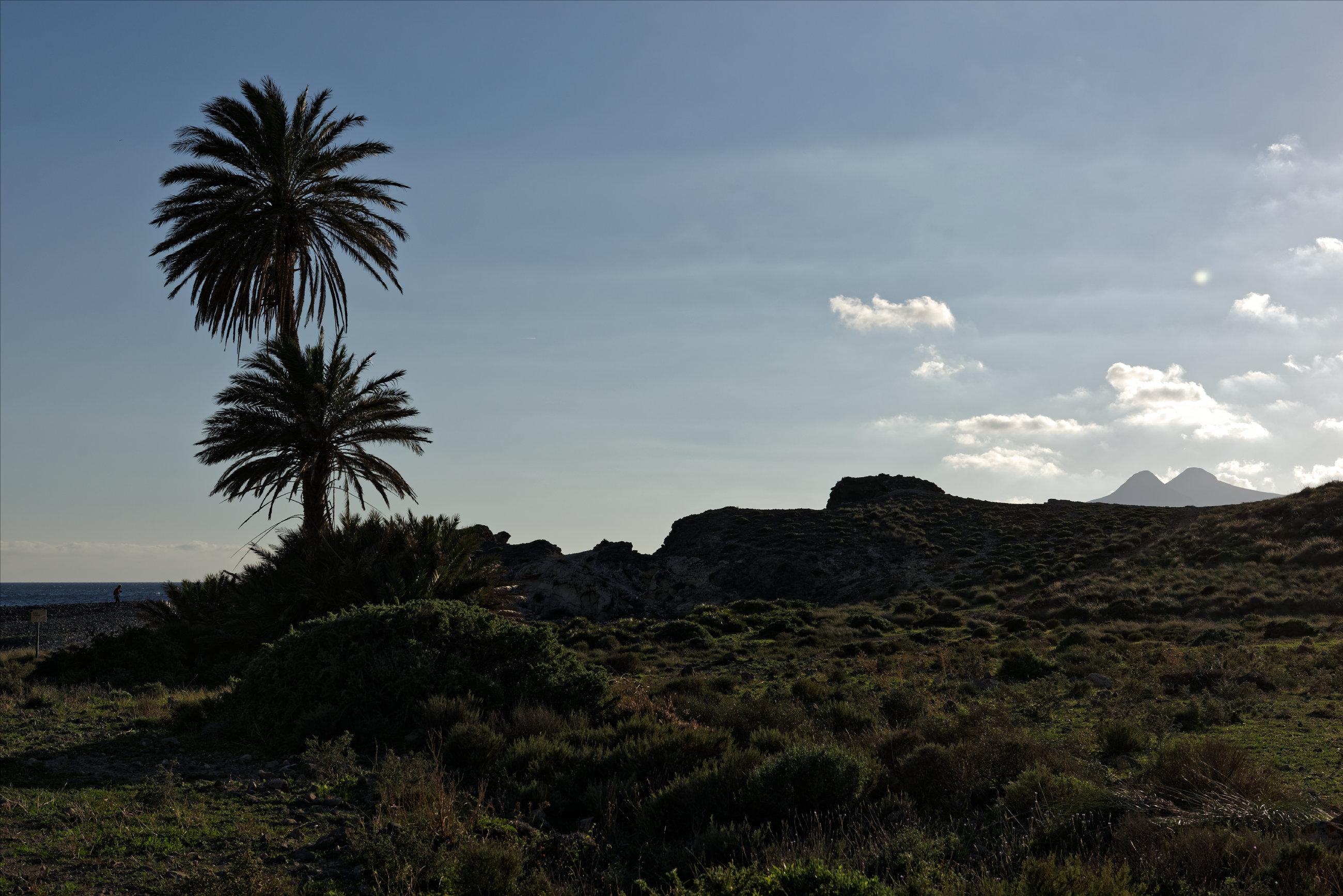 151108-Playa Cola del Carnaje (16)
