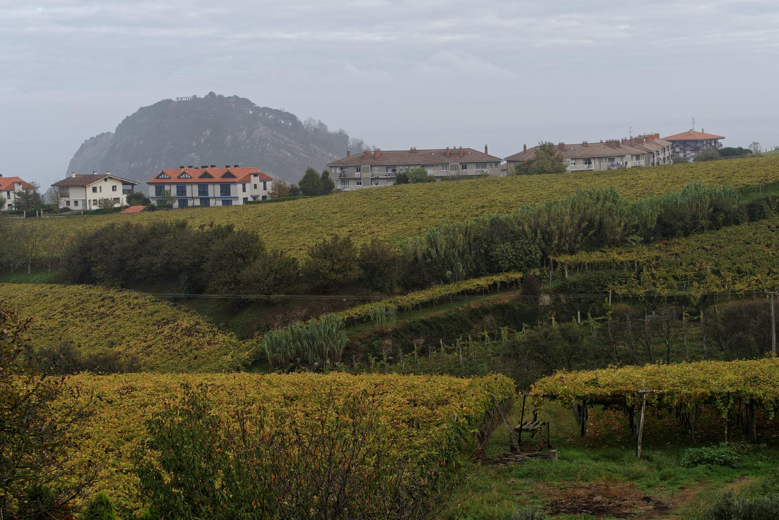 Getaria (Pays basque espagnol (11)