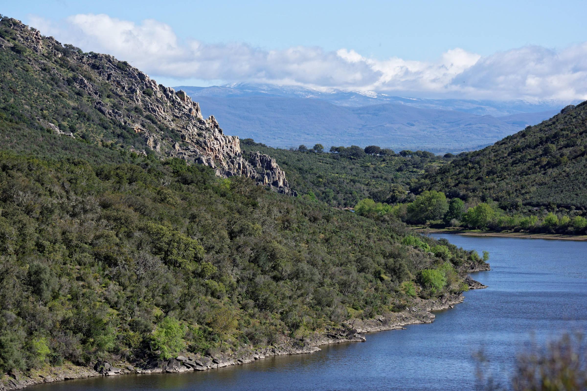 160405-parc national de monfrague (Estremadure) (131)