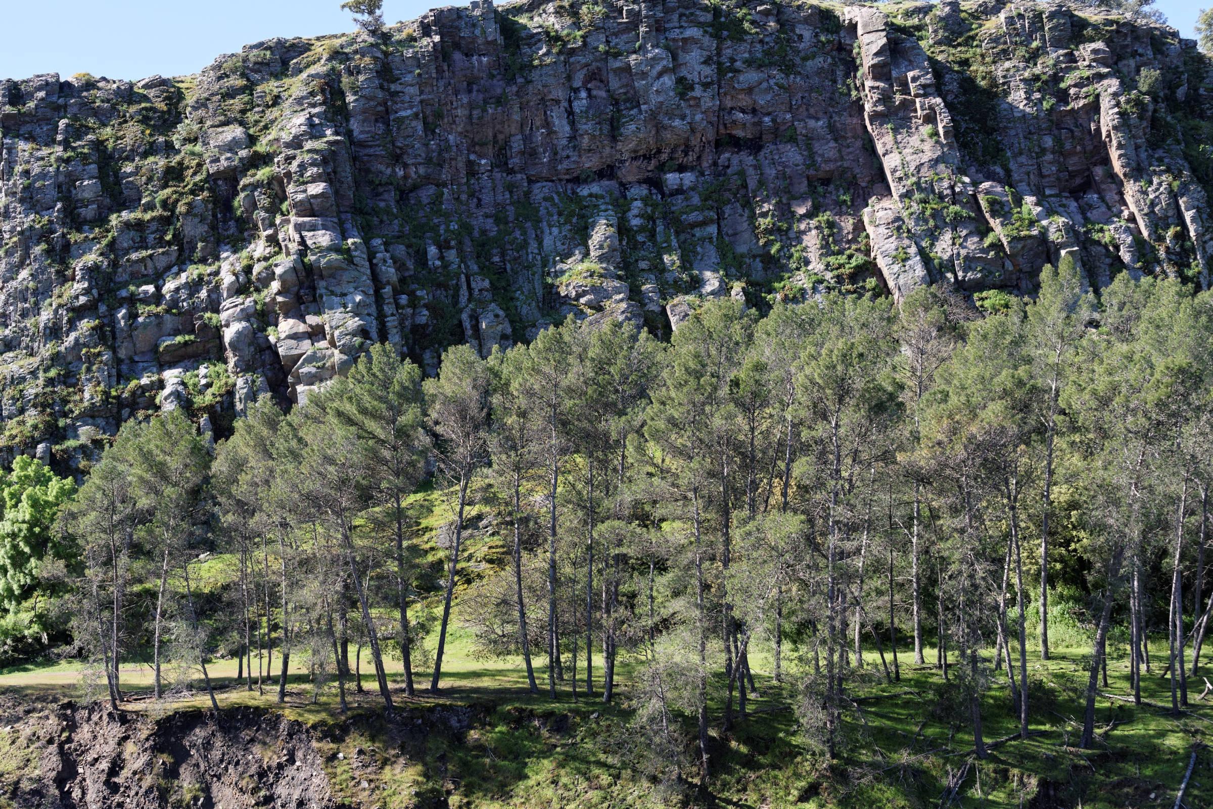 160405-parc national de monfrague (Estremadure) (146)
