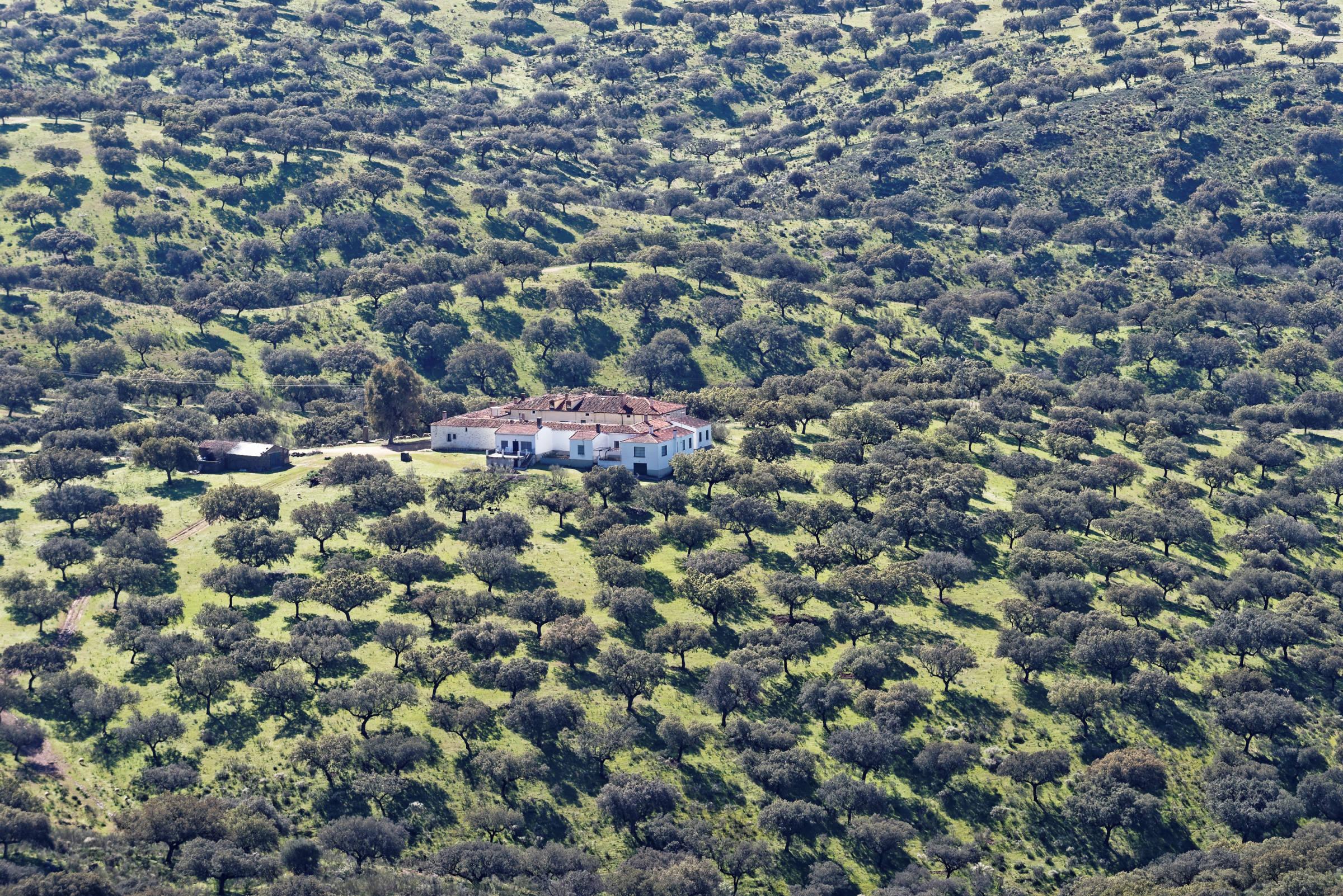 160405-parc national de monfrague (Estremadure) (151)