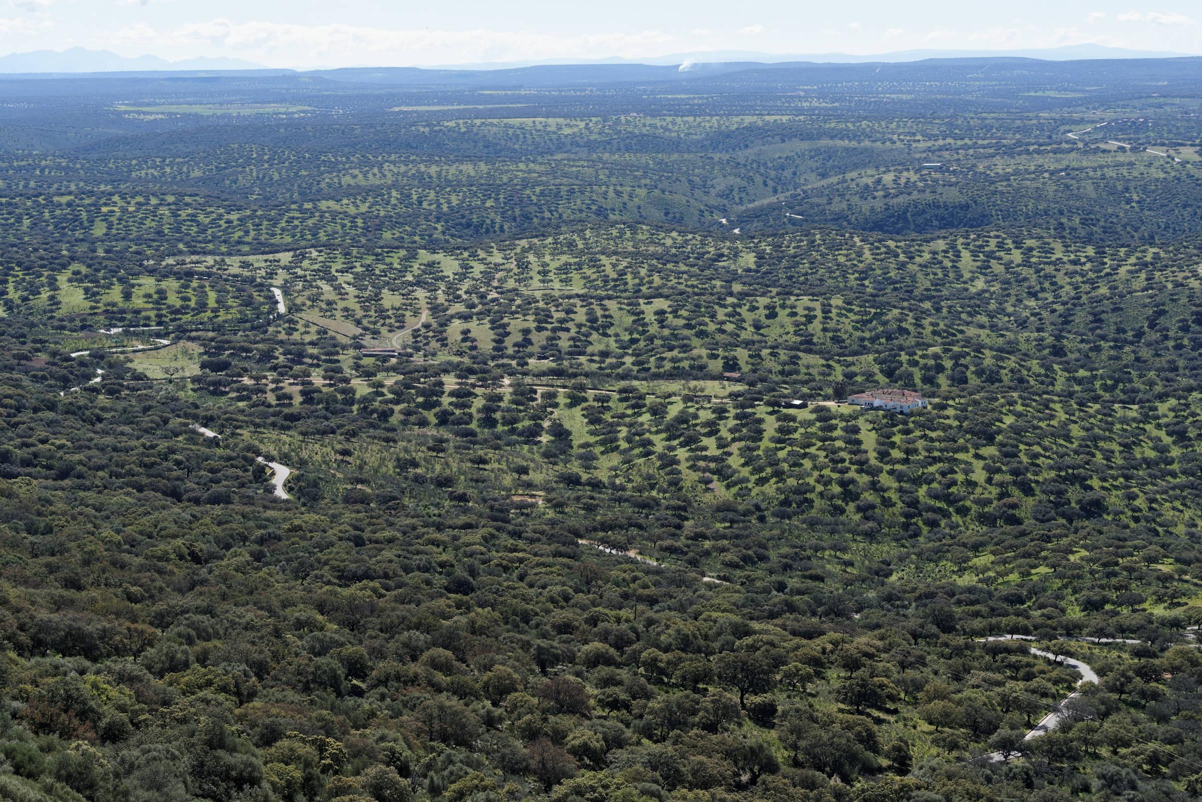160405-parc national de monfrague (Estremadure) (179)