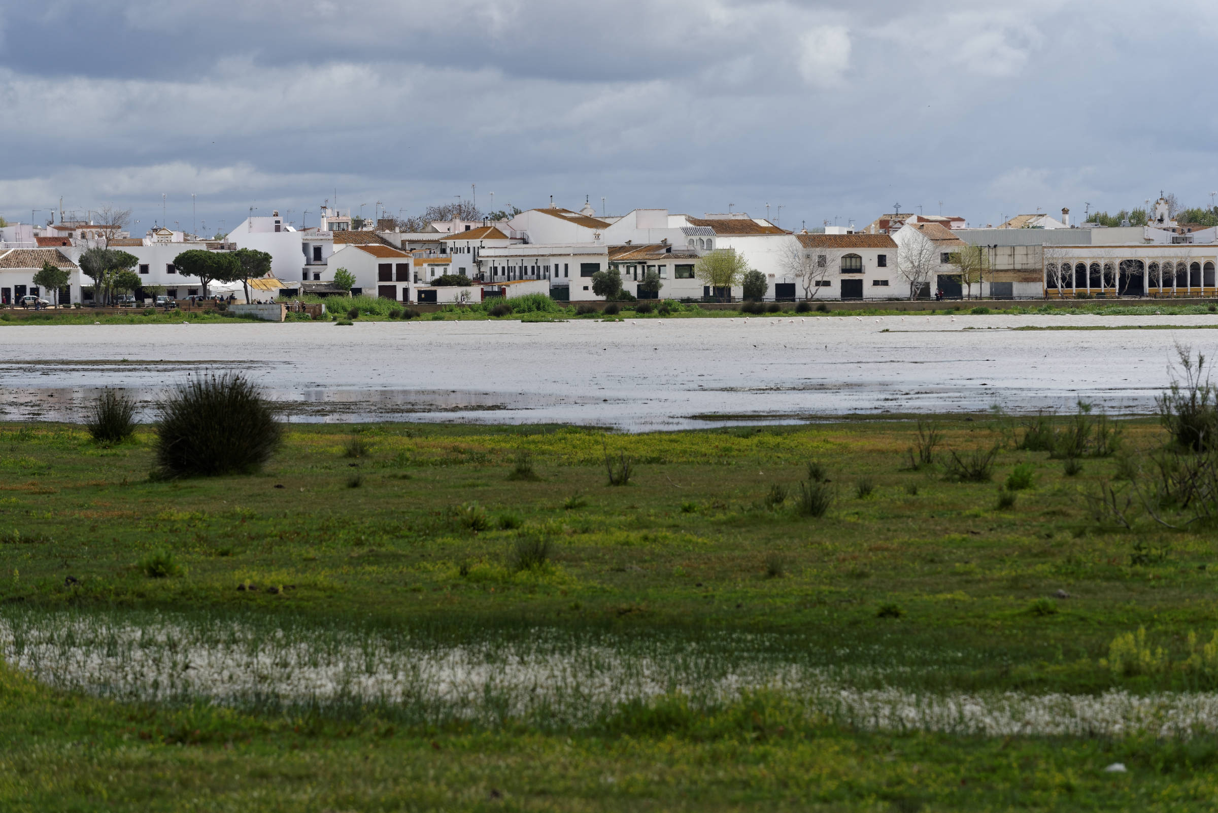 160409-El Rocio (Andalousie) (1129)