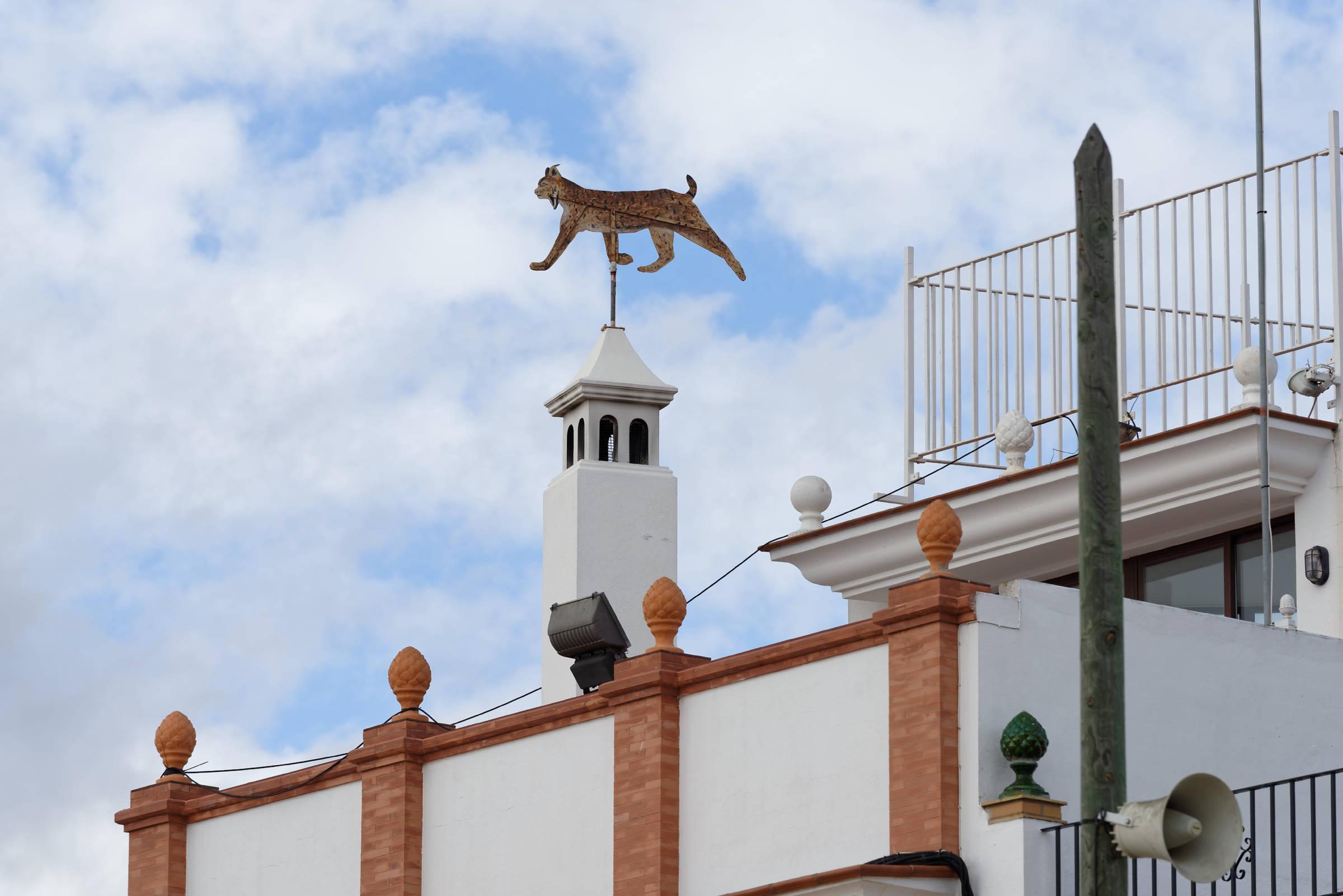 160409-El Rocio (Andalousie) (1166)