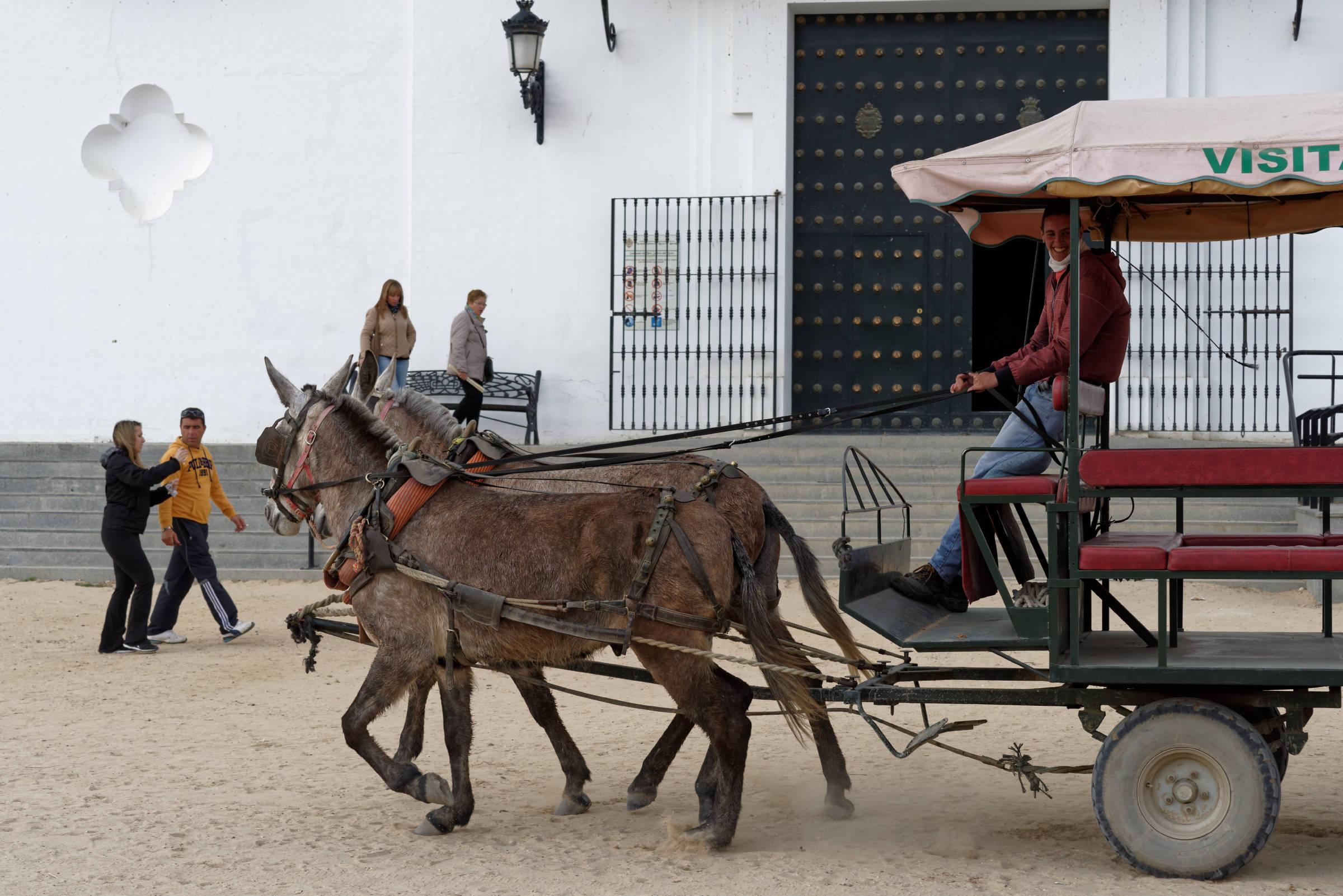 160409-El Rocio (Andalousie) (1170)
