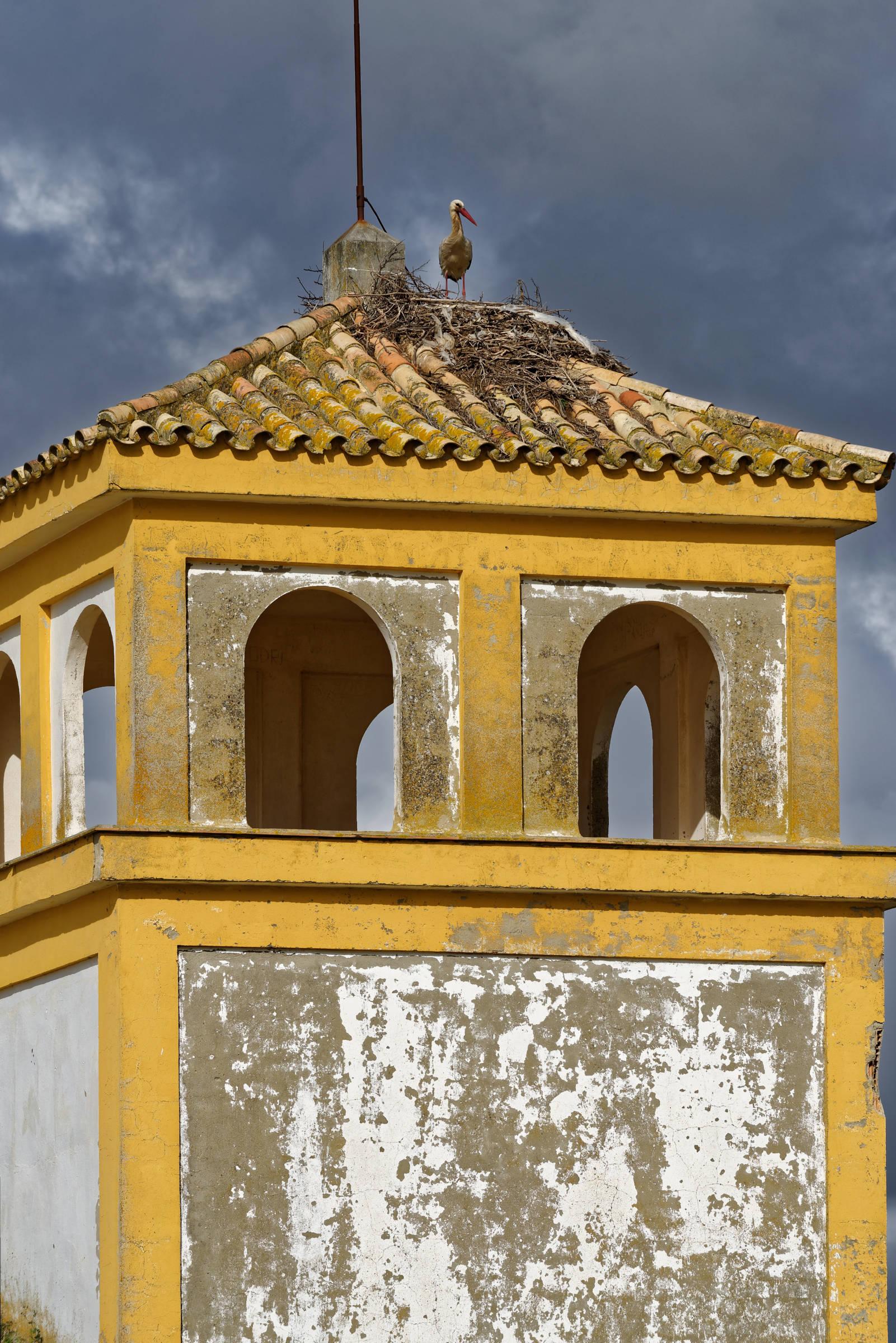160412-La Algaida (Andalousie) (134)
