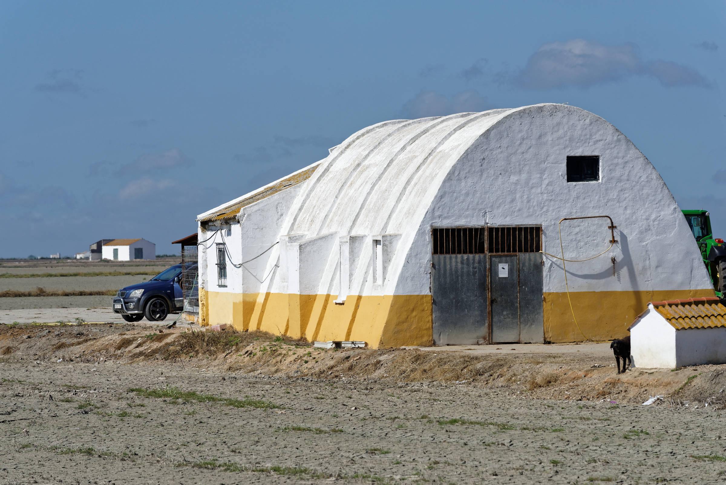 160414-Isla Mayor (Andalousie) (23)