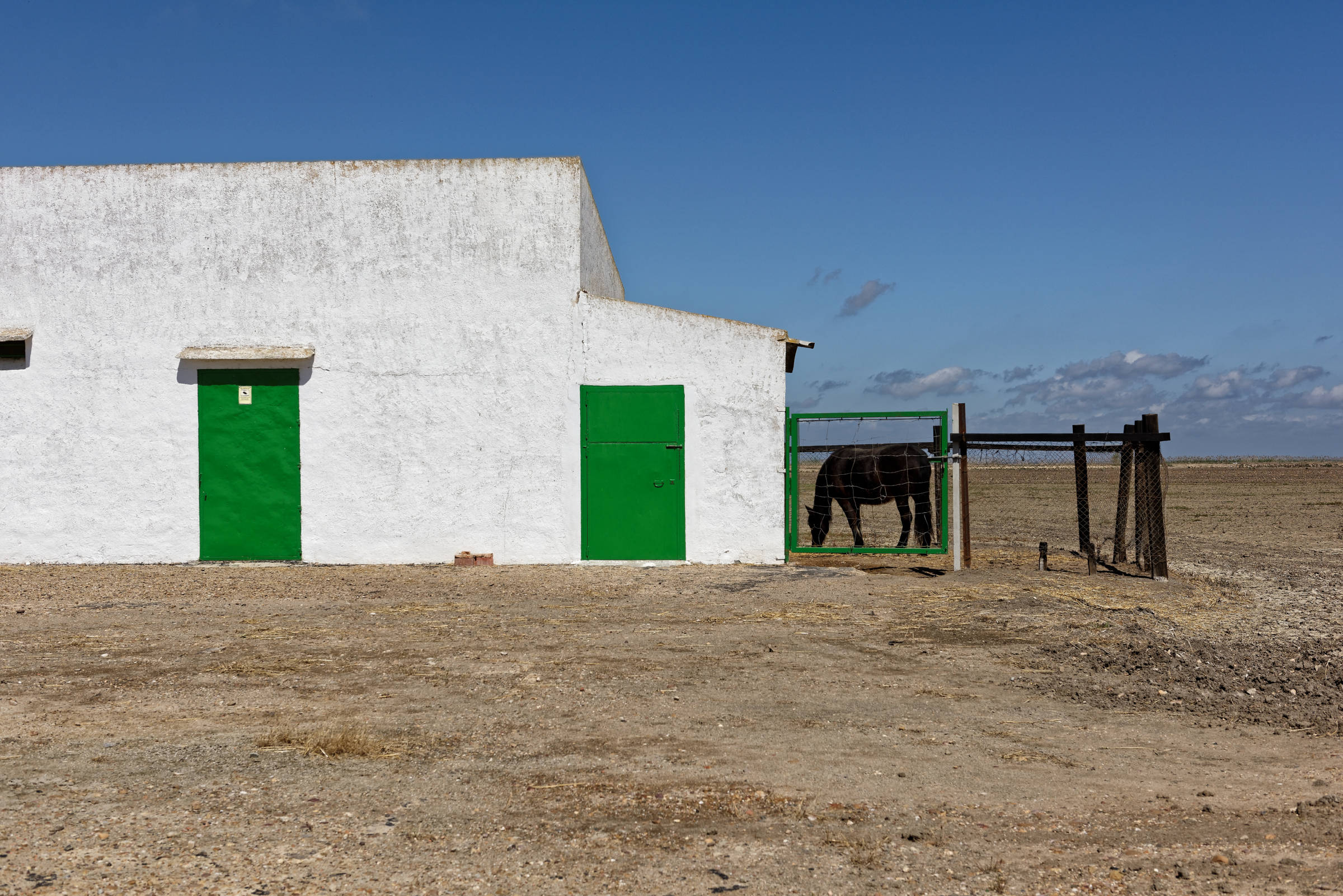 160414-Isla minima - Escobar (Andalousie) (11)_1