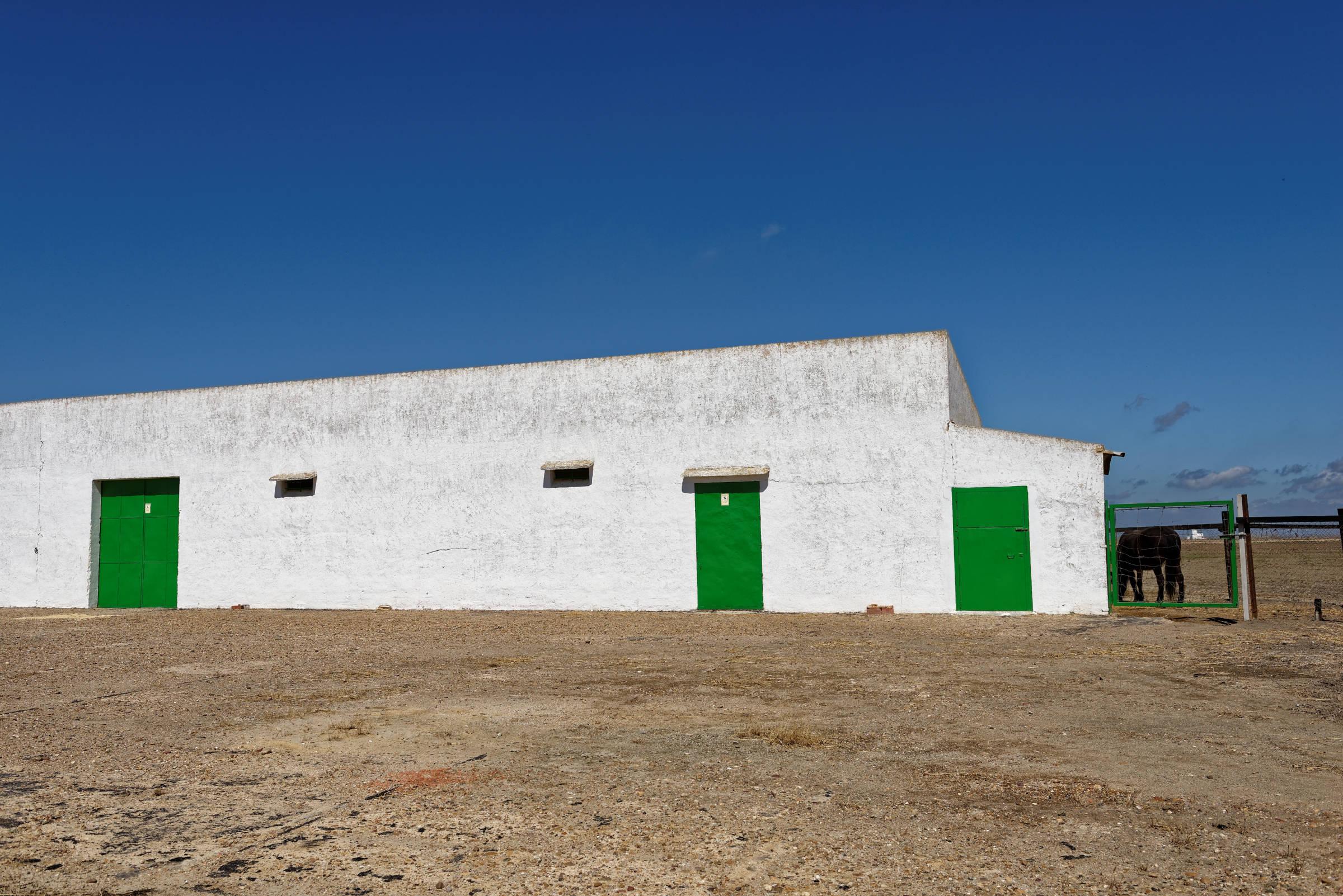 160414-Isla minima - Escobar (Andalousie) (12)