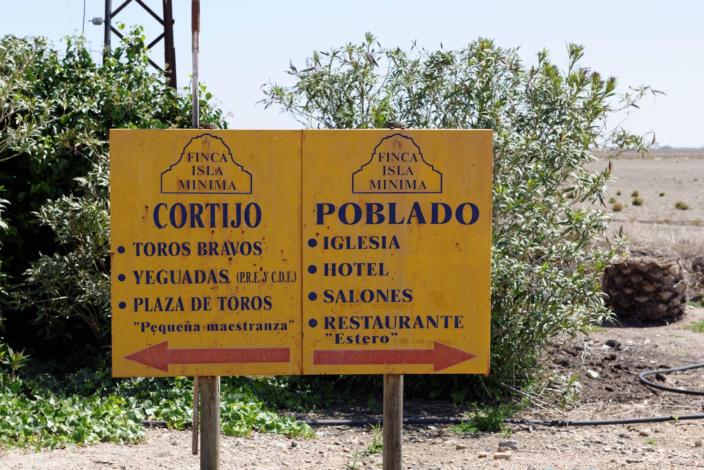 160414-Isla minima - Escobar (Andalousie) (20)
