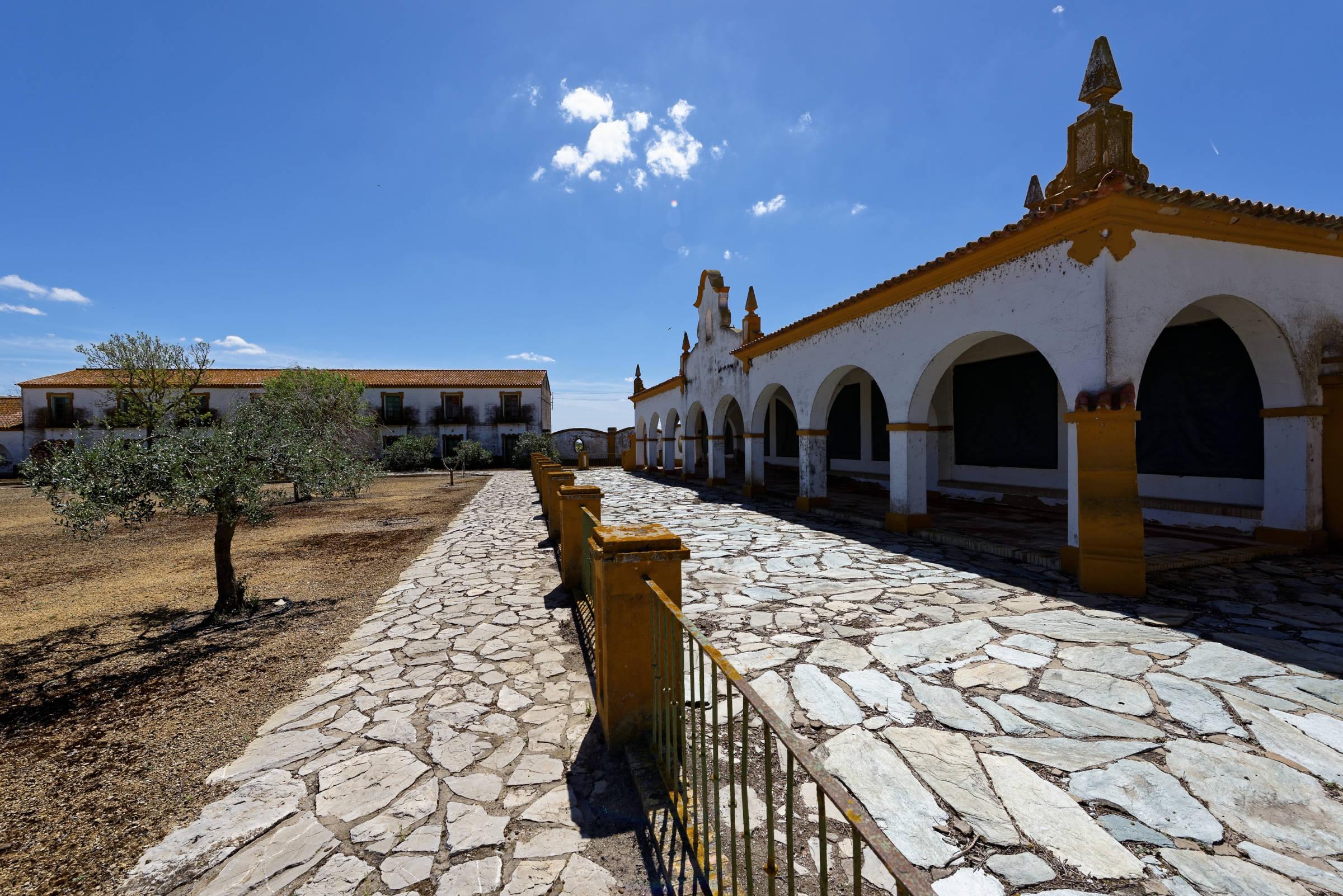 160414-Isla minima - Escobar (Andalousie) (39)