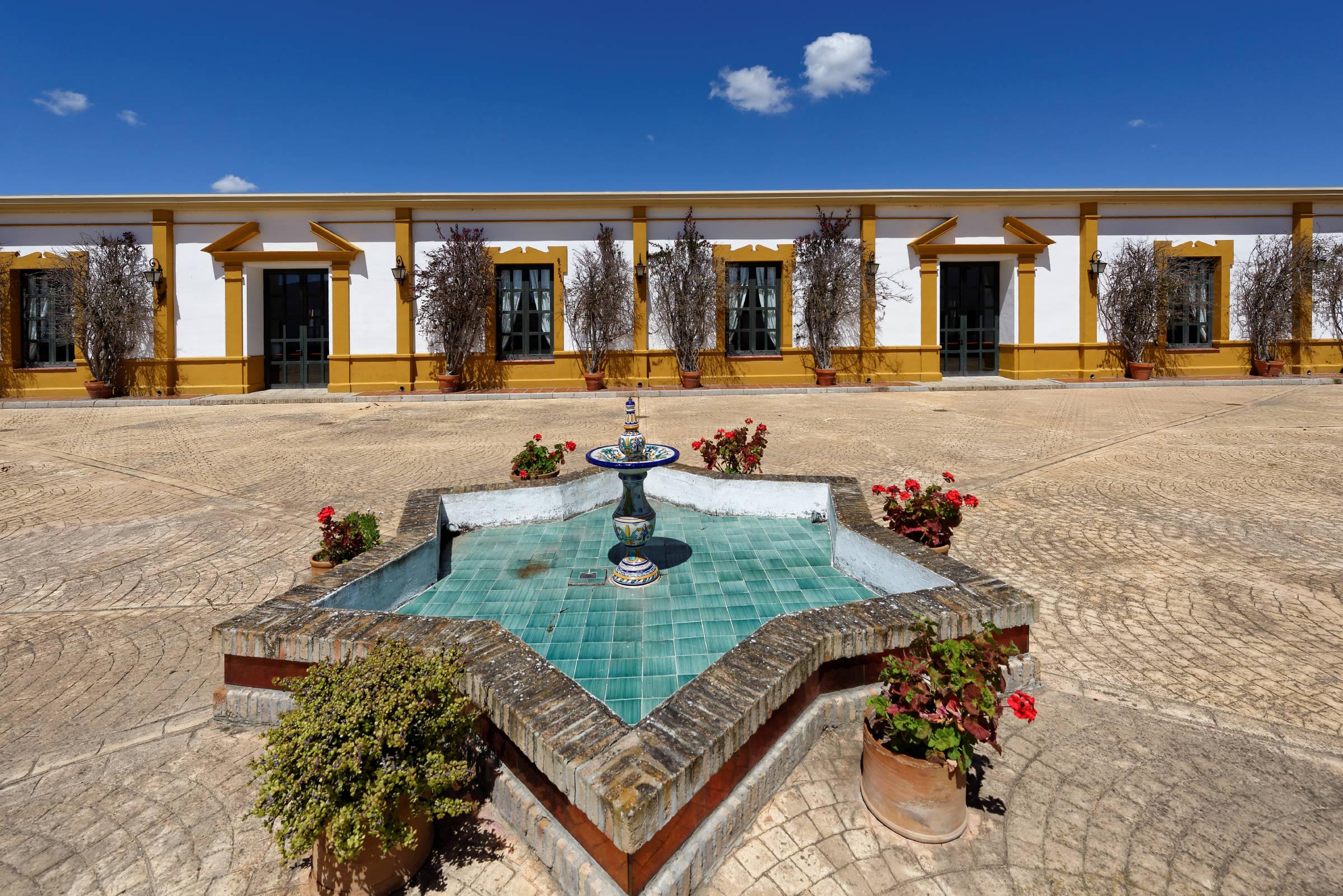 160414-Isla minima - Escobar (Andalousie) (45)