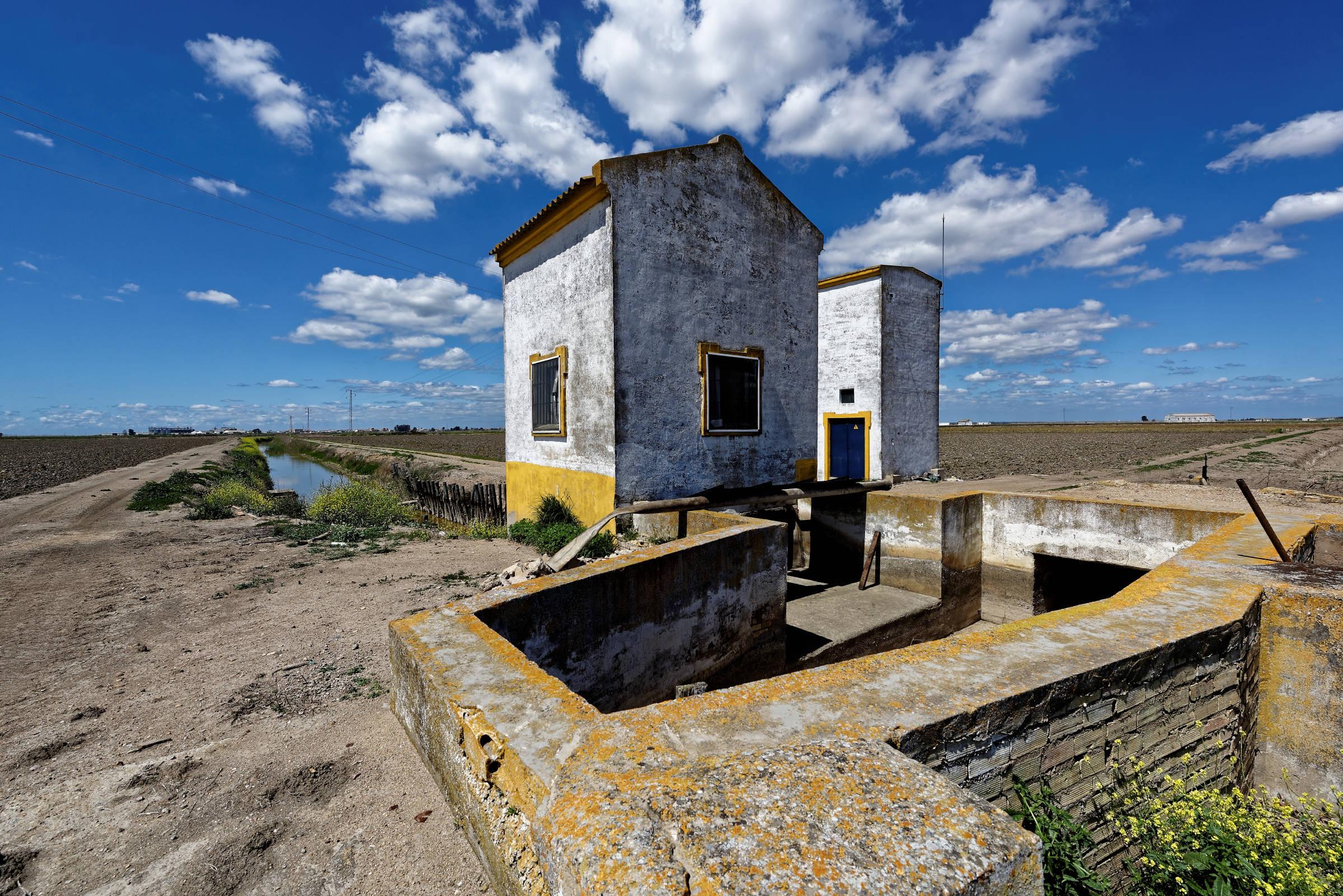 160414-Isla minima - Escobar (Andalousie) (55)