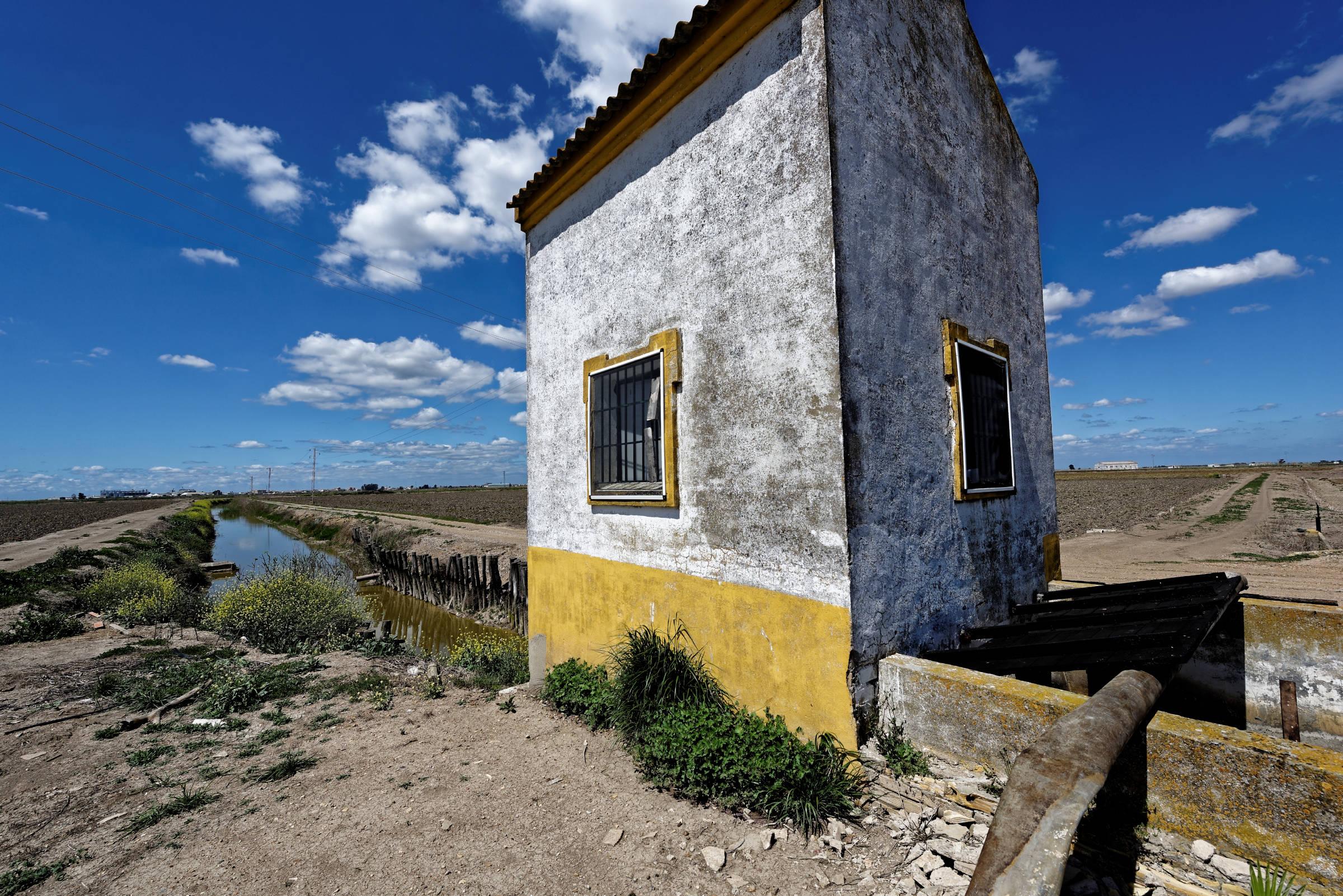 160414-Isla minima - Escobar (Andalousie) (56)