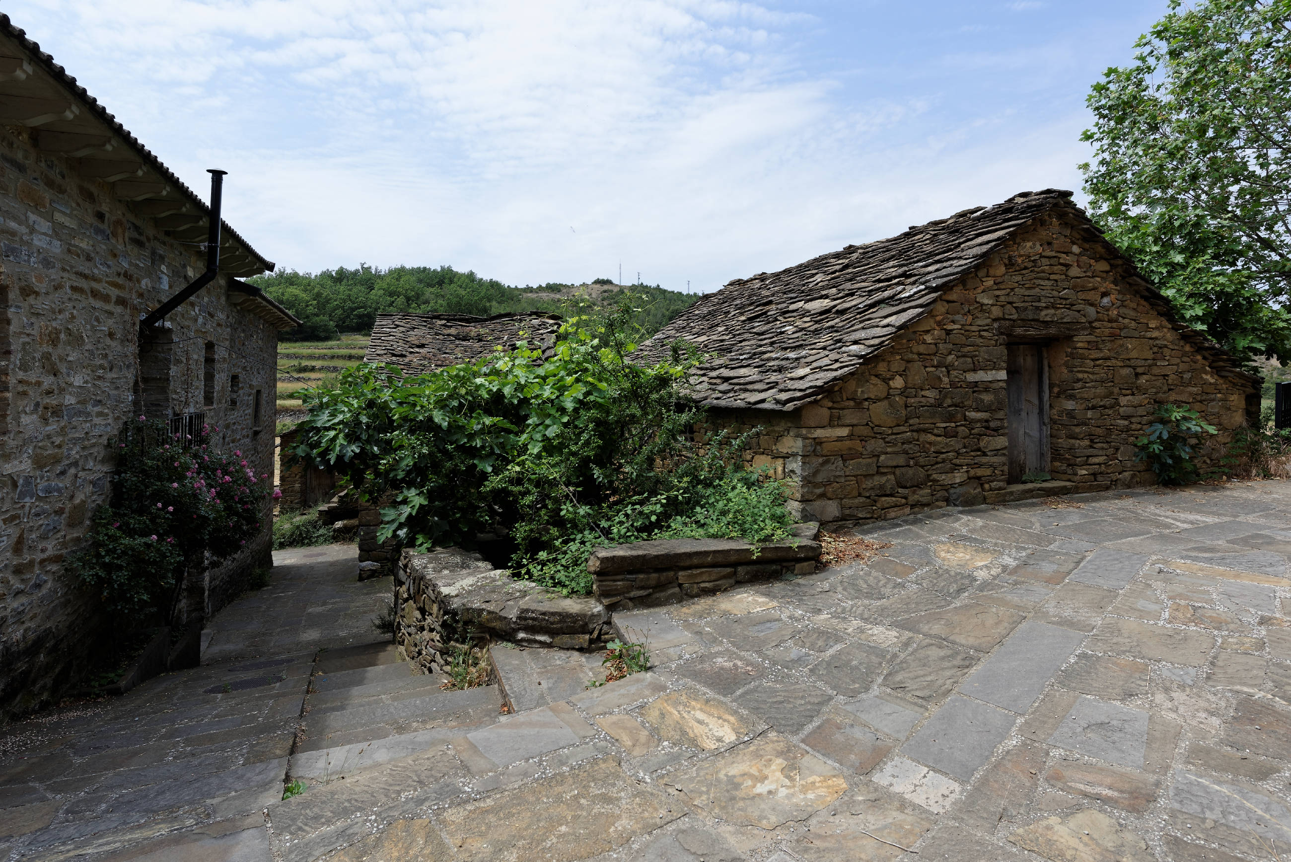 160629-Torrelisa (Sobrarbe-Aragon) (15)
