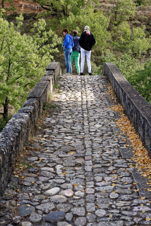 161011-6-puente-de-campanachal-ou-de-la-albarda-somontano-12