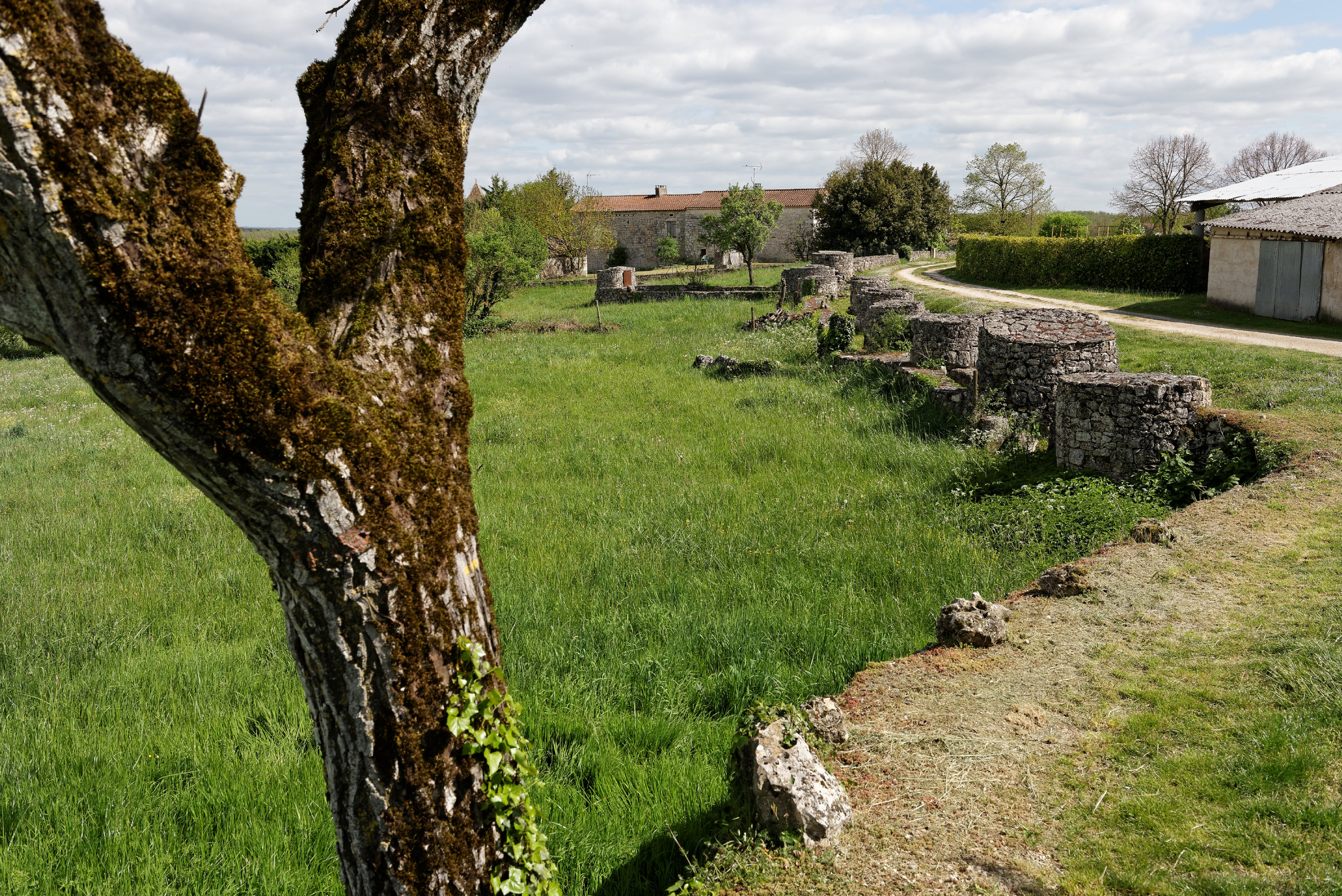 170416- Laburgade le chemin des puits- Lot (26)