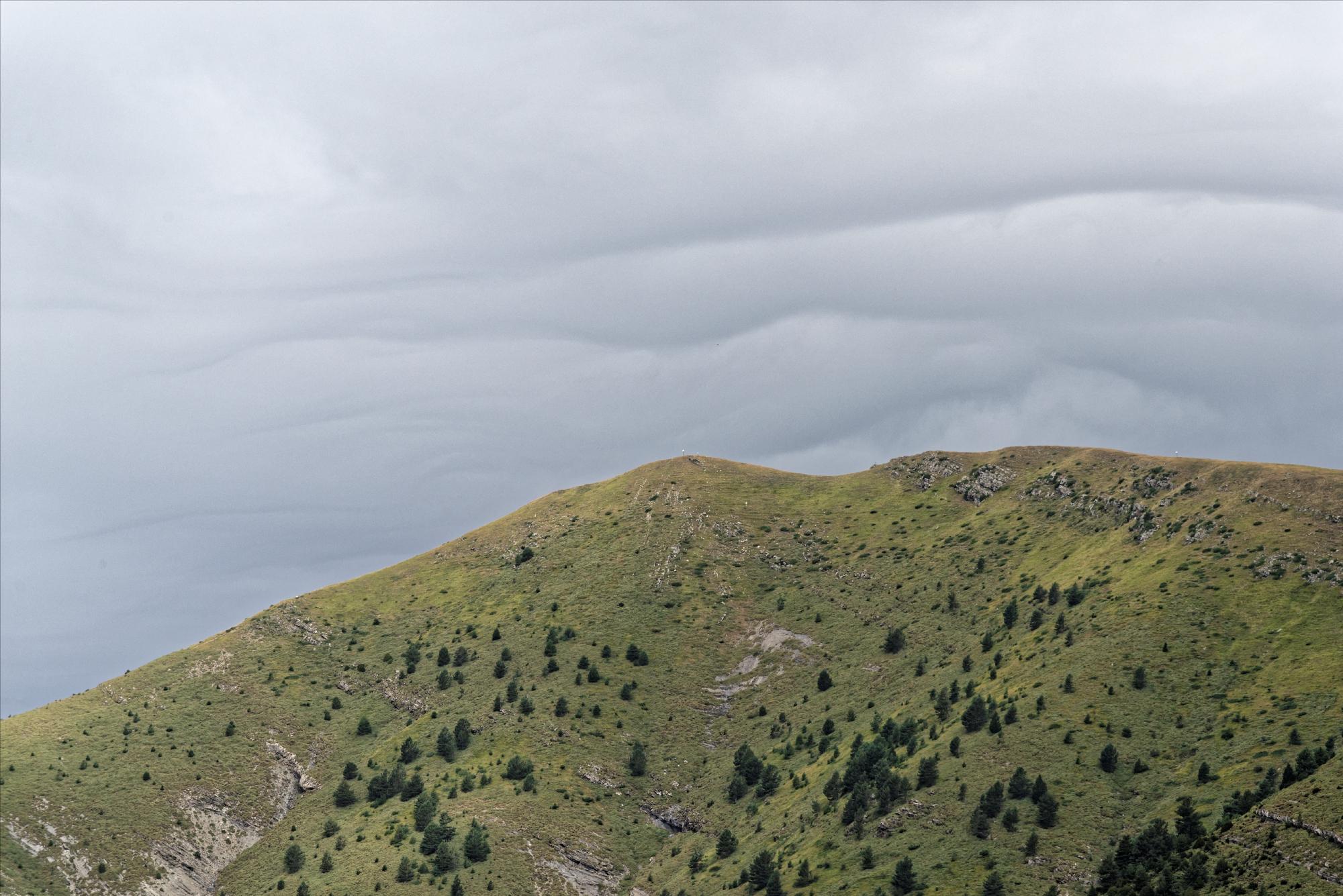 170829 - Montana de Sensa - Los Sestrales (Sobrarbe) (117)