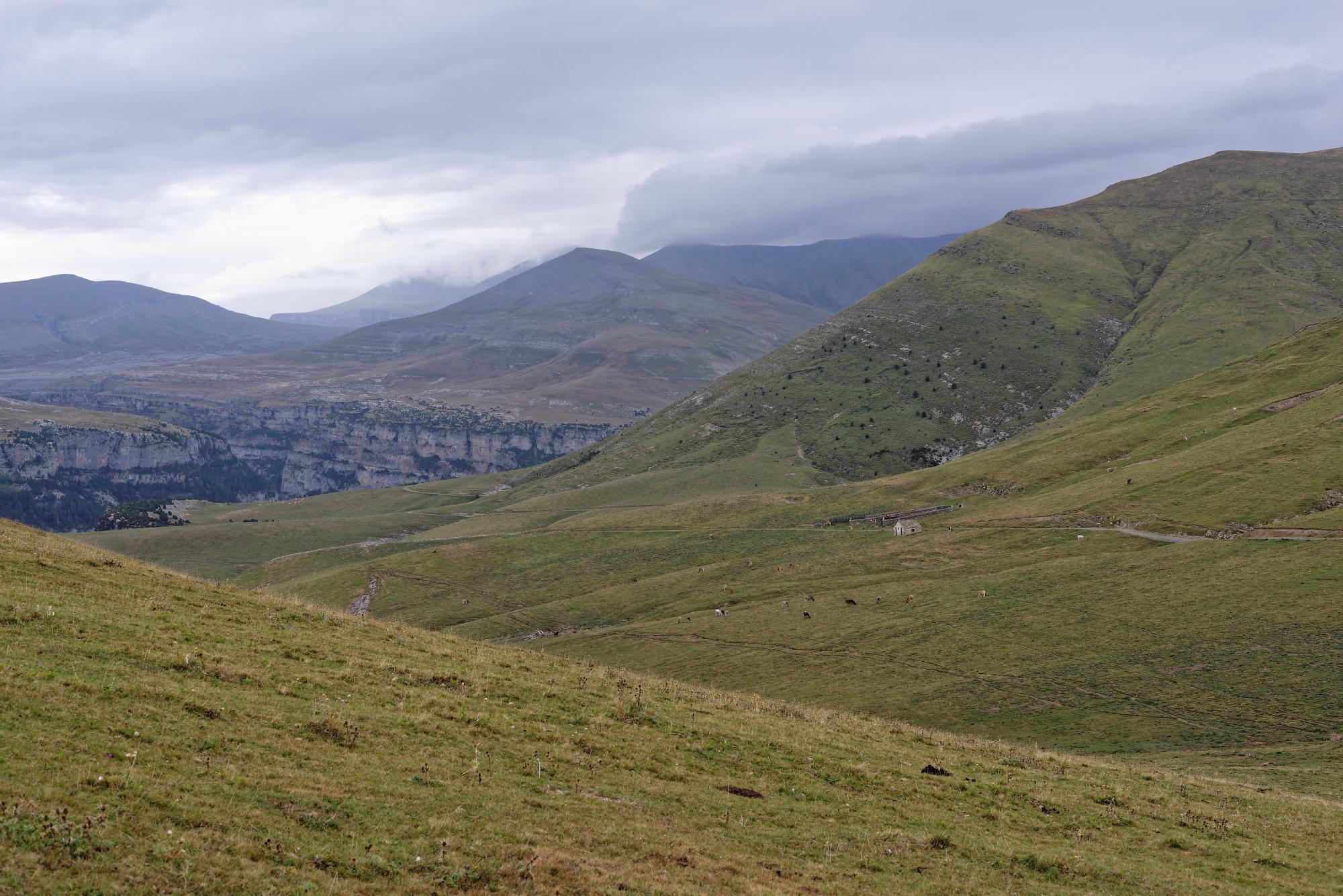 170829 - Montana de Sensa - Los Sestrales (Sobrarbe) (137)