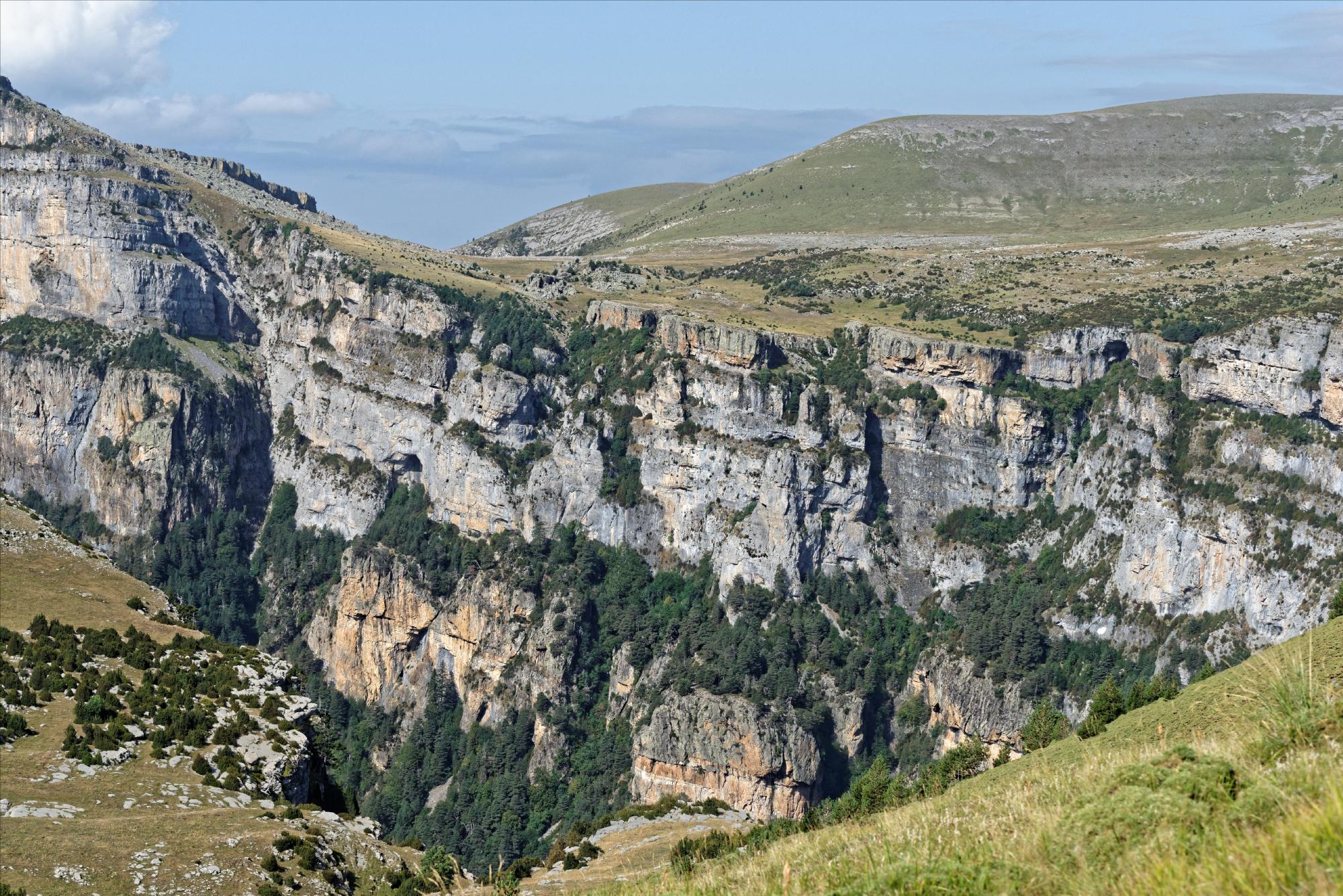 170829 - Montana de Sensa - Los Sestrales (Sobrarbe) (157)