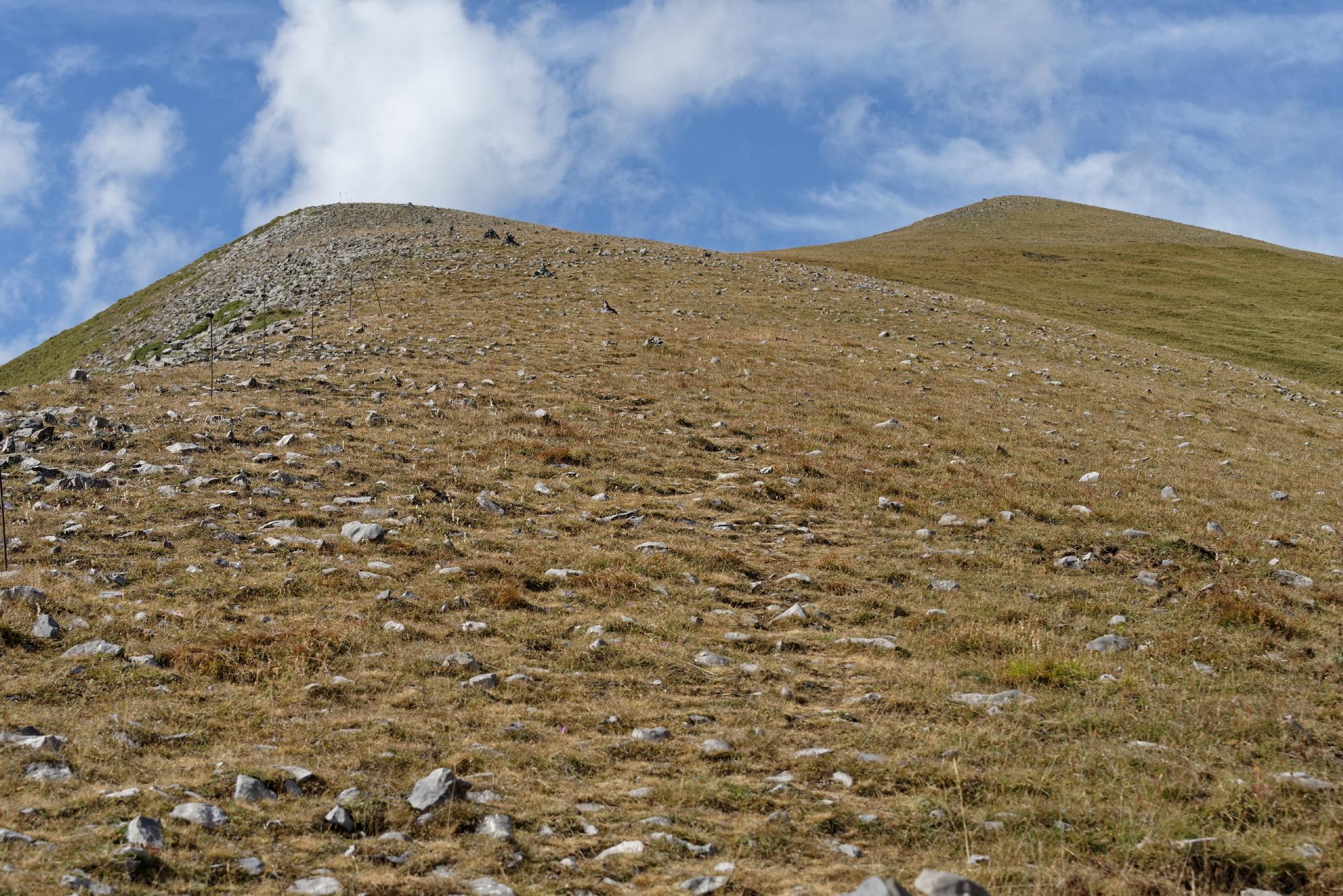 170829 - Montana de Sensa - Los Sestrales (Sobrarbe) (171)