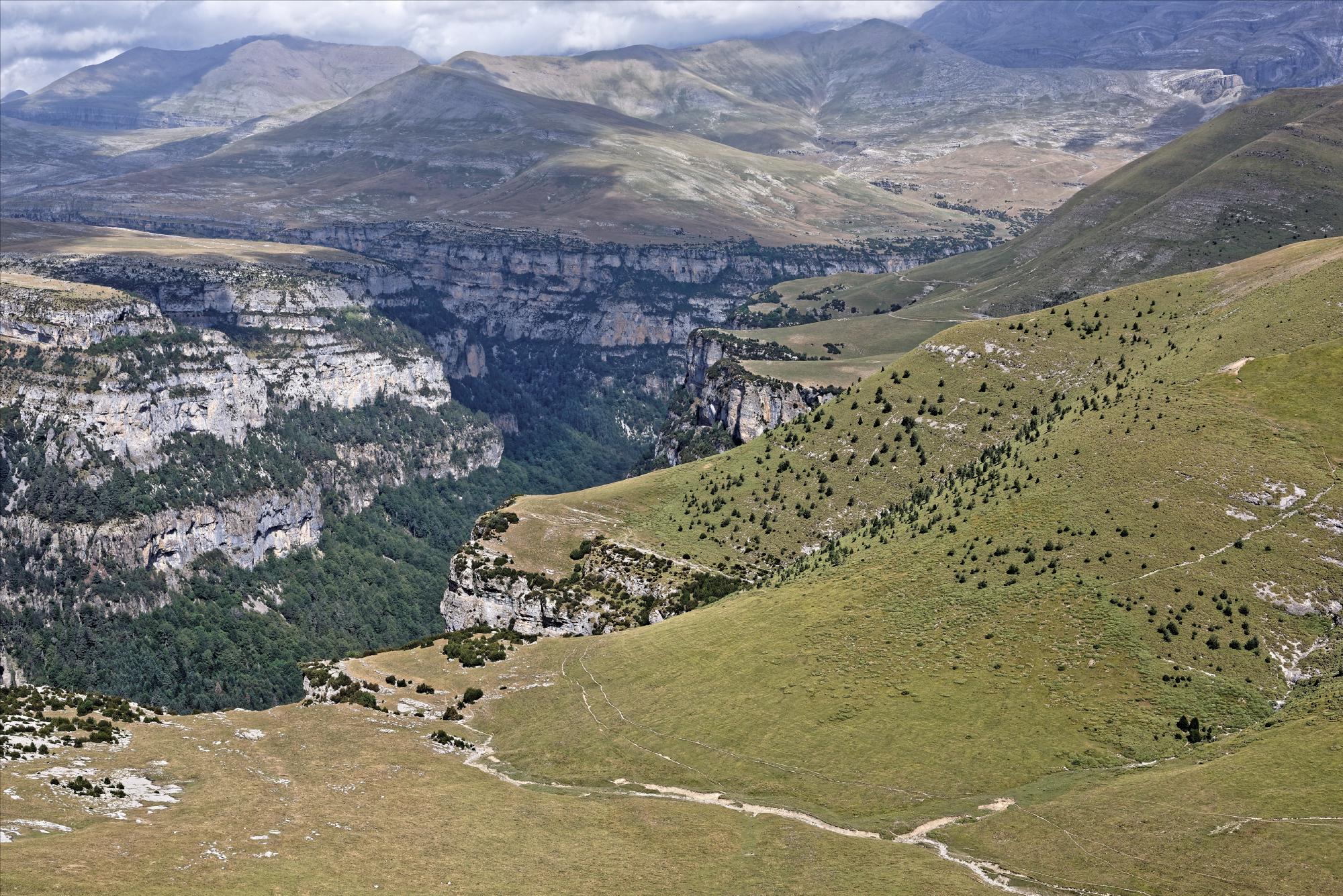 170829 - Montana de Sensa - Los Sestrales (Sobrarbe) (190)