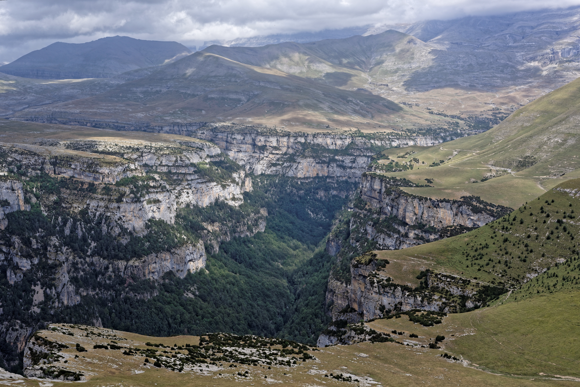 170829 - Montana de Sensa - Los Sestrales (Sobrarbe) (198)