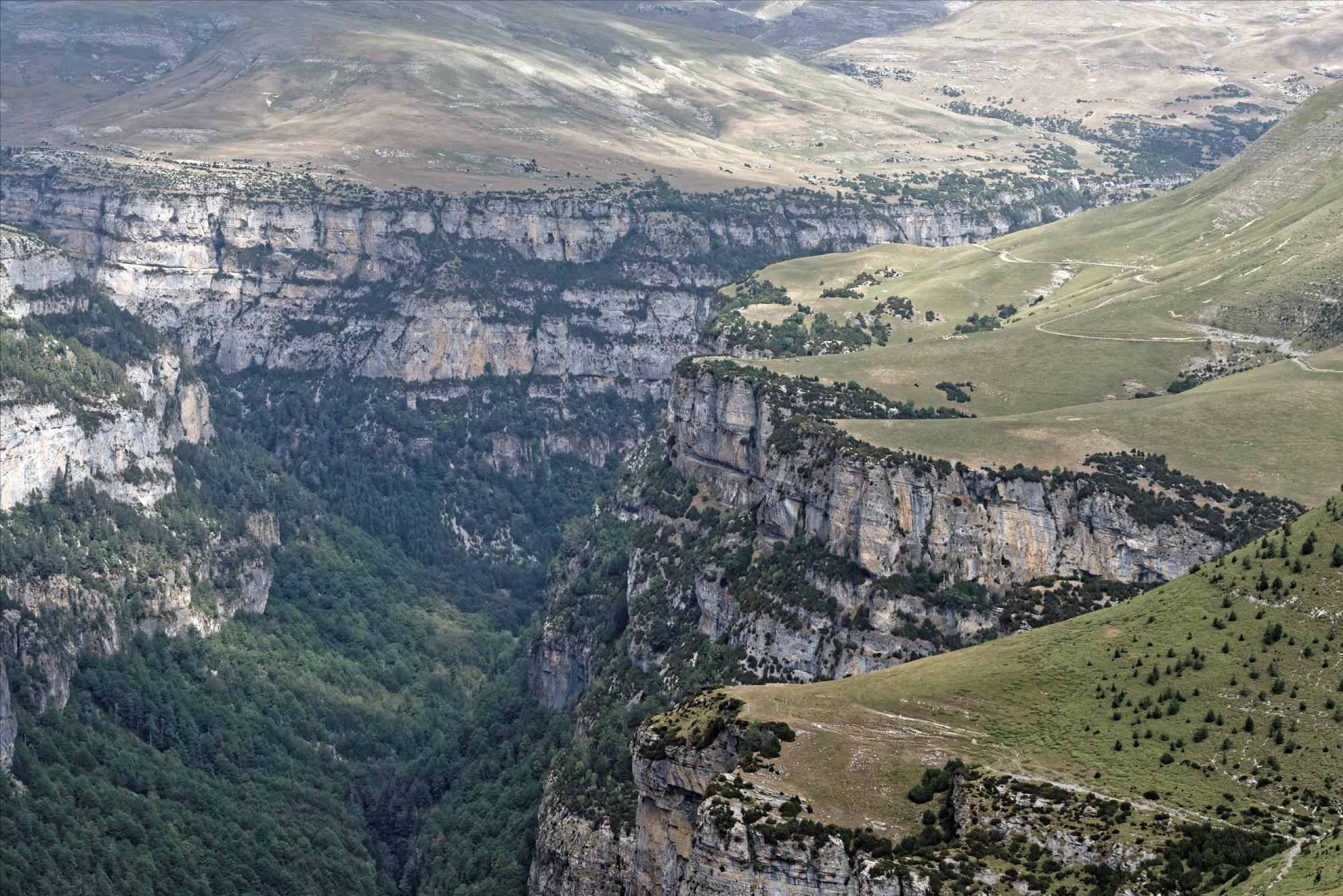 170829 - Montana de Sensa - Los Sestrales (Sobrarbe) (199)