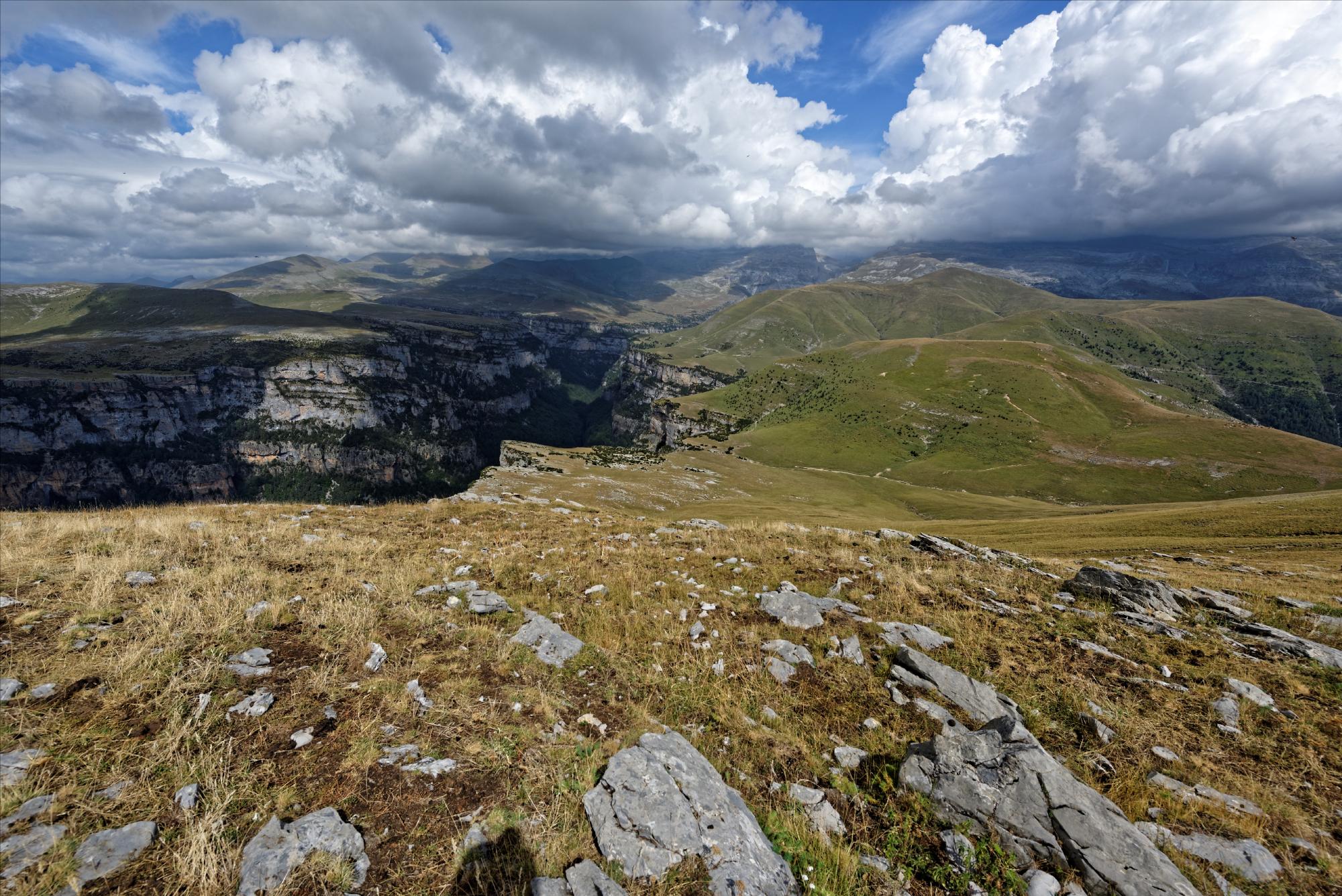 170829 - Montana de Sensa - Los Sestrales (Sobrarbe) (217)