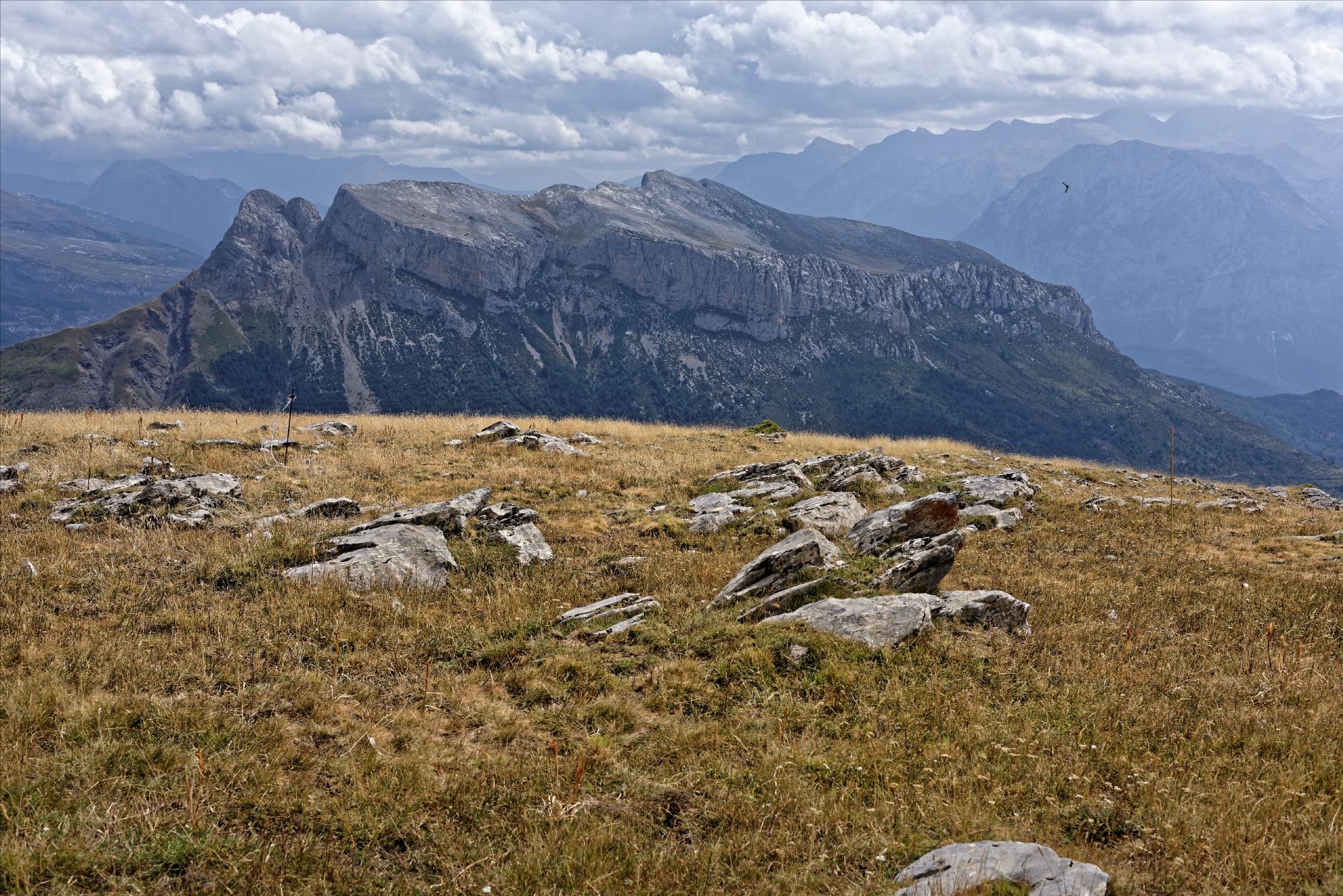 170829 - Montana de Sensa - Los Sestrales (Sobrarbe) (225)