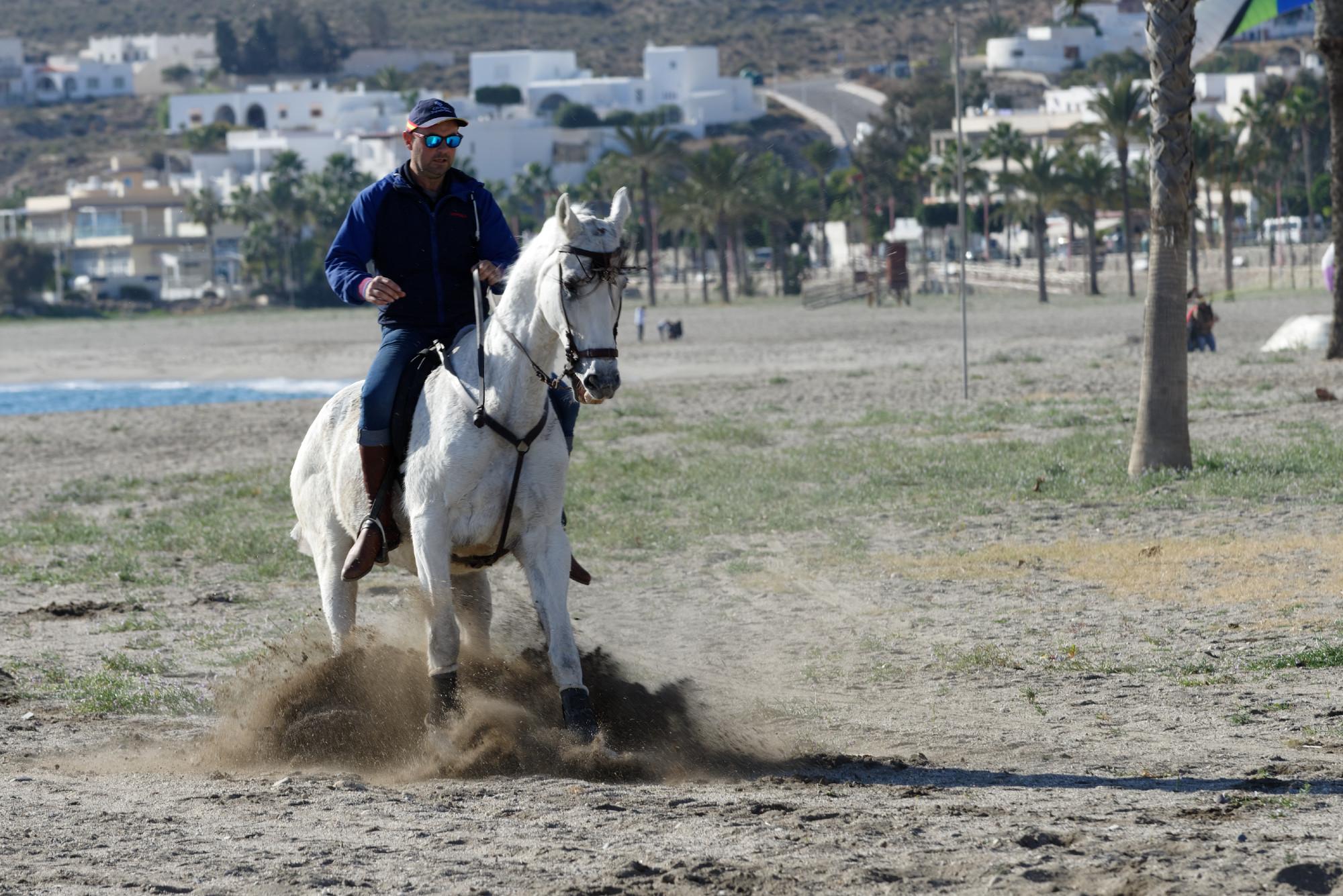 171210-Carboneras (23) (Cabo de Gata-Andalousie)