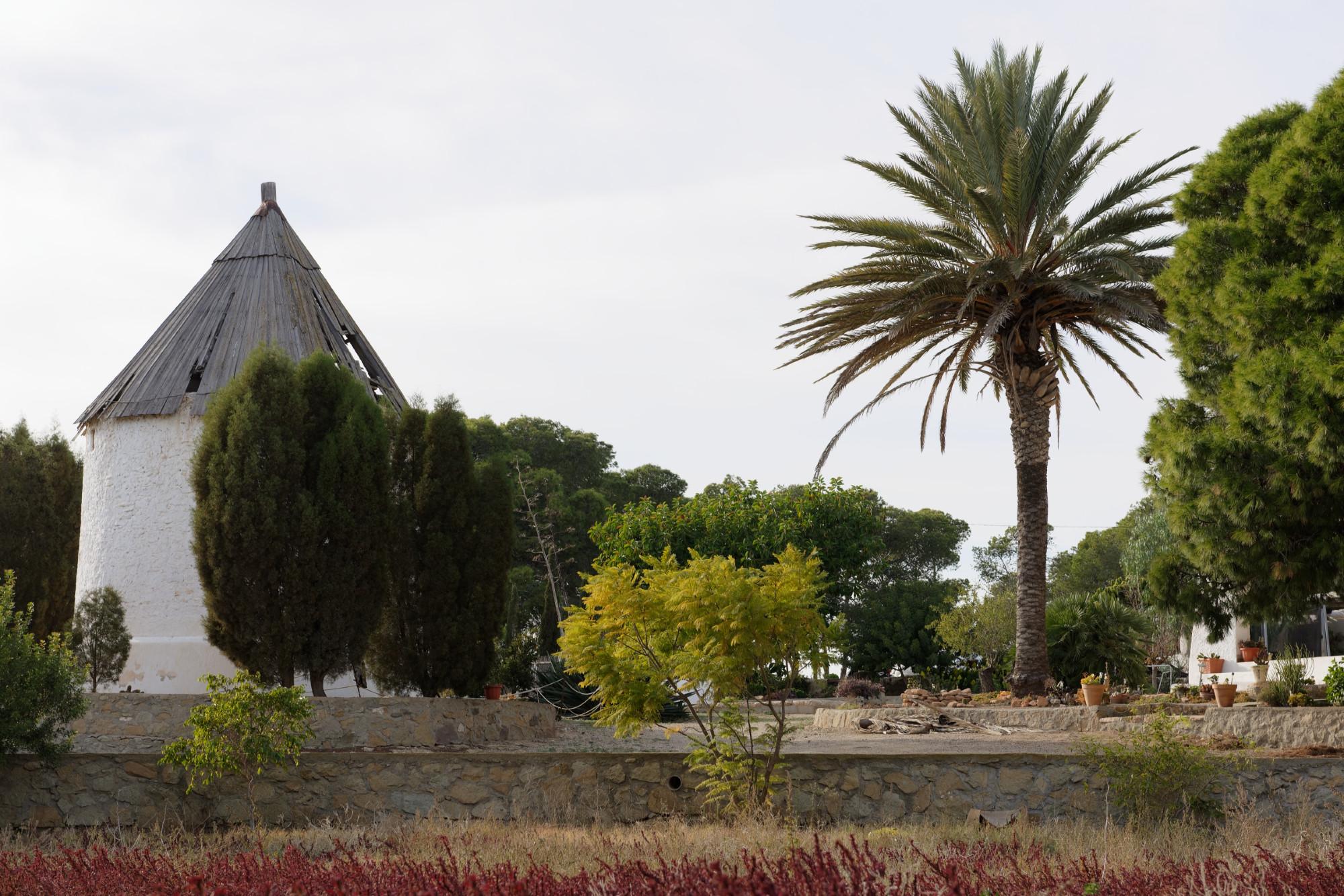 171210-Las Negras (104) (Cabo de Gata-Andalousie)