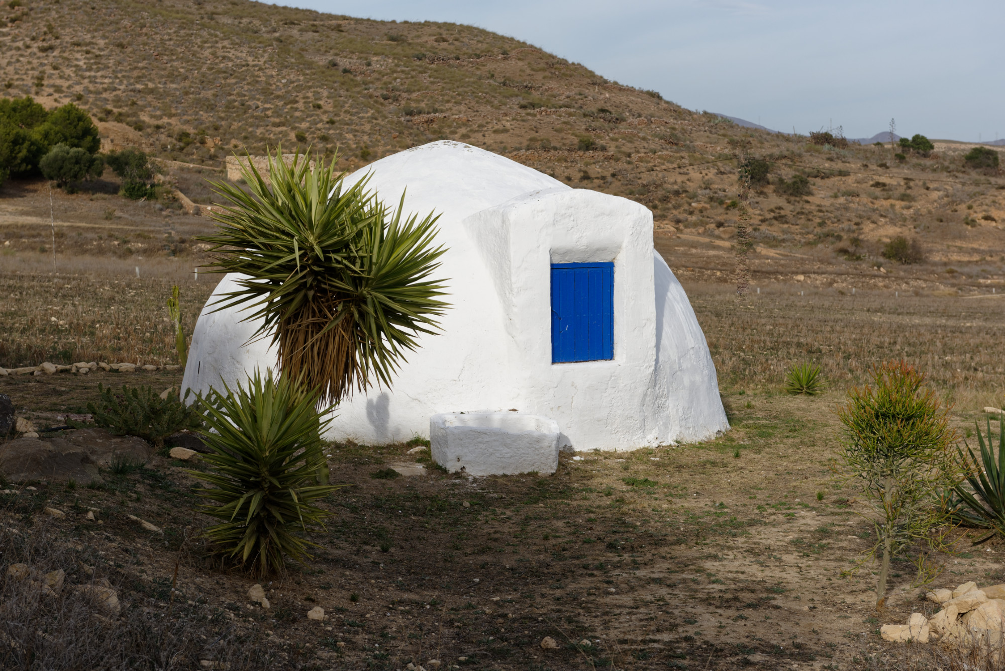 171210-Las Negras (108) (Cabo de Gata-Andalousie)