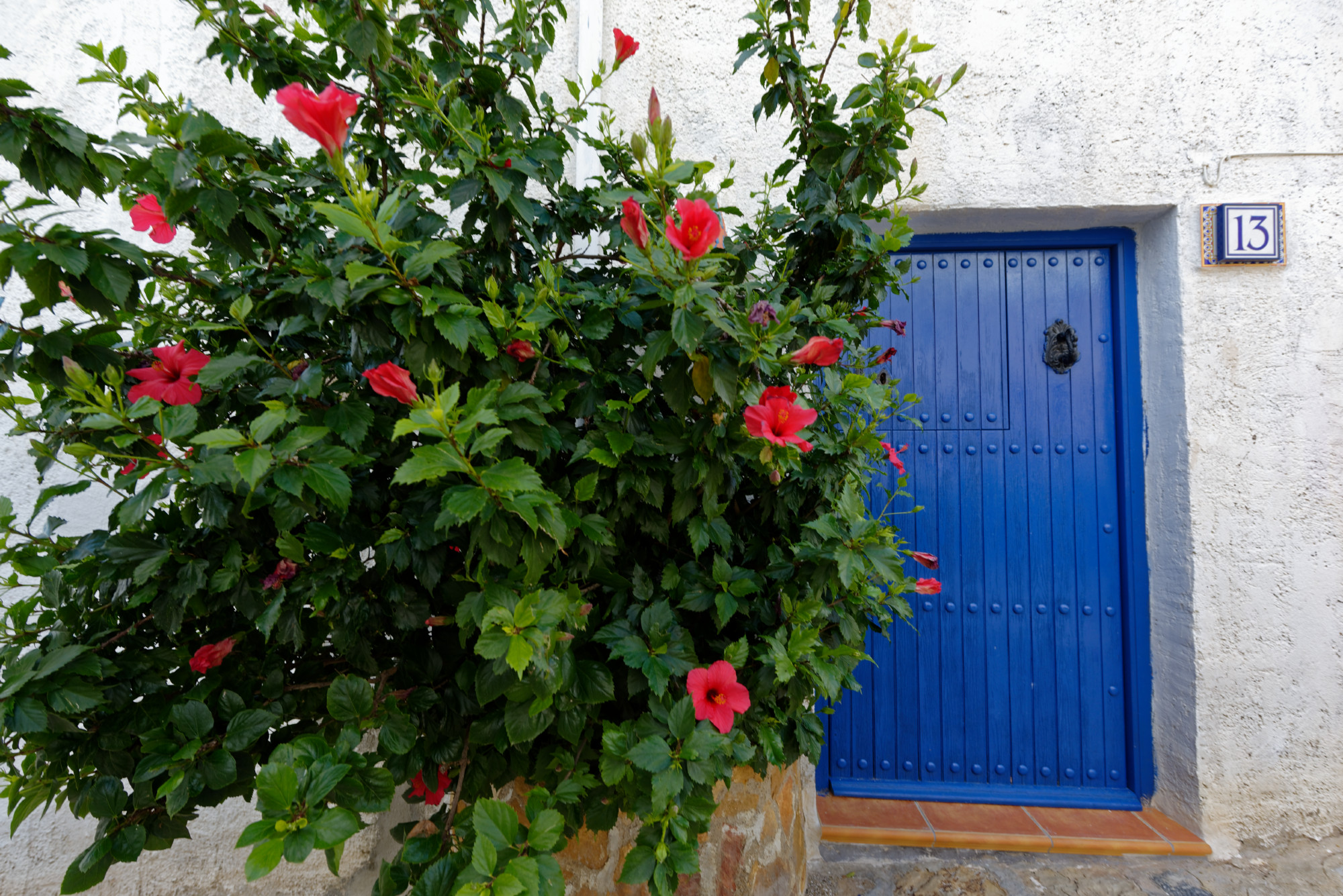 171210-Mojacar (145) (Cabo de Gata-Andalousie)