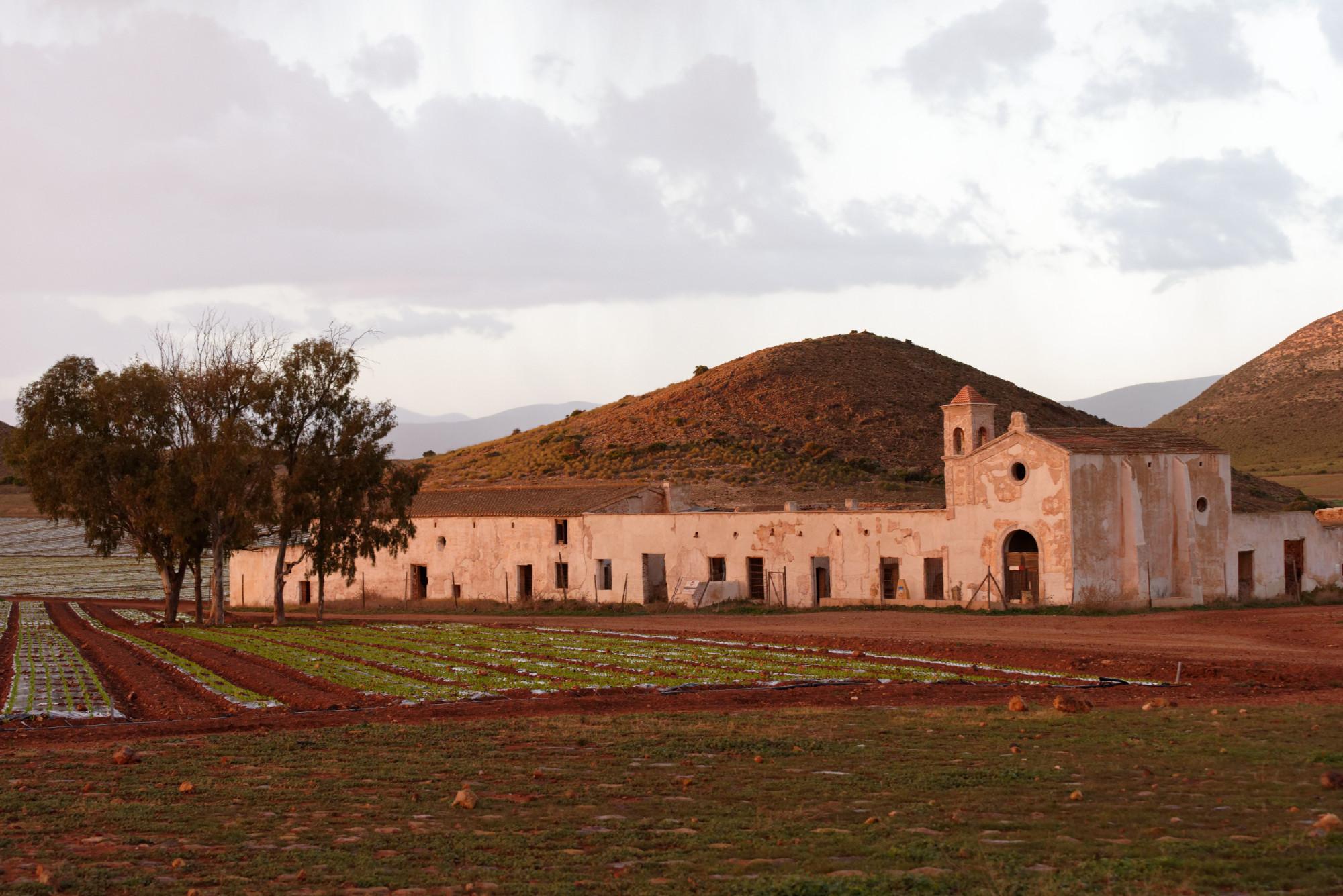 171212-Cortijo del Fraile (55) (Cabo de Gata-Andalousie)