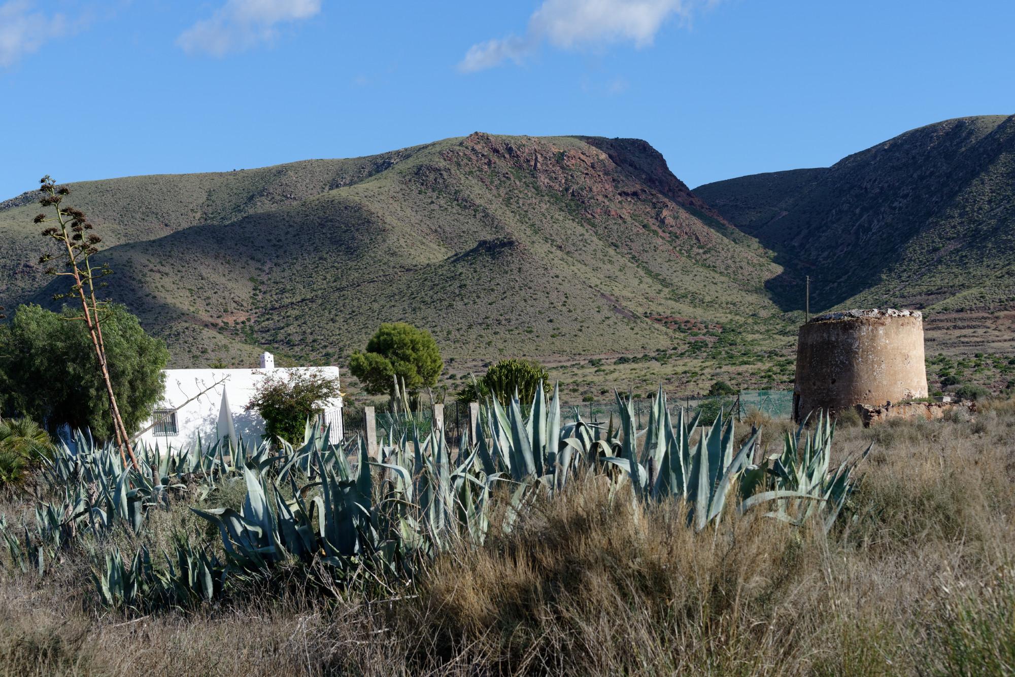 171212-Marche La Boca de los Frailes vers Cerro de Limones (10) (Cabo de Gata-Andalousie)
