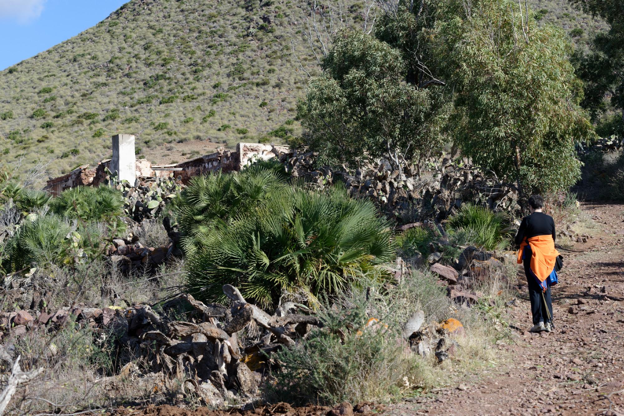 171212-Marche La Boca de los Frailes vers Cerro de Limones (23) (Cabo de Gata-Andalousie)