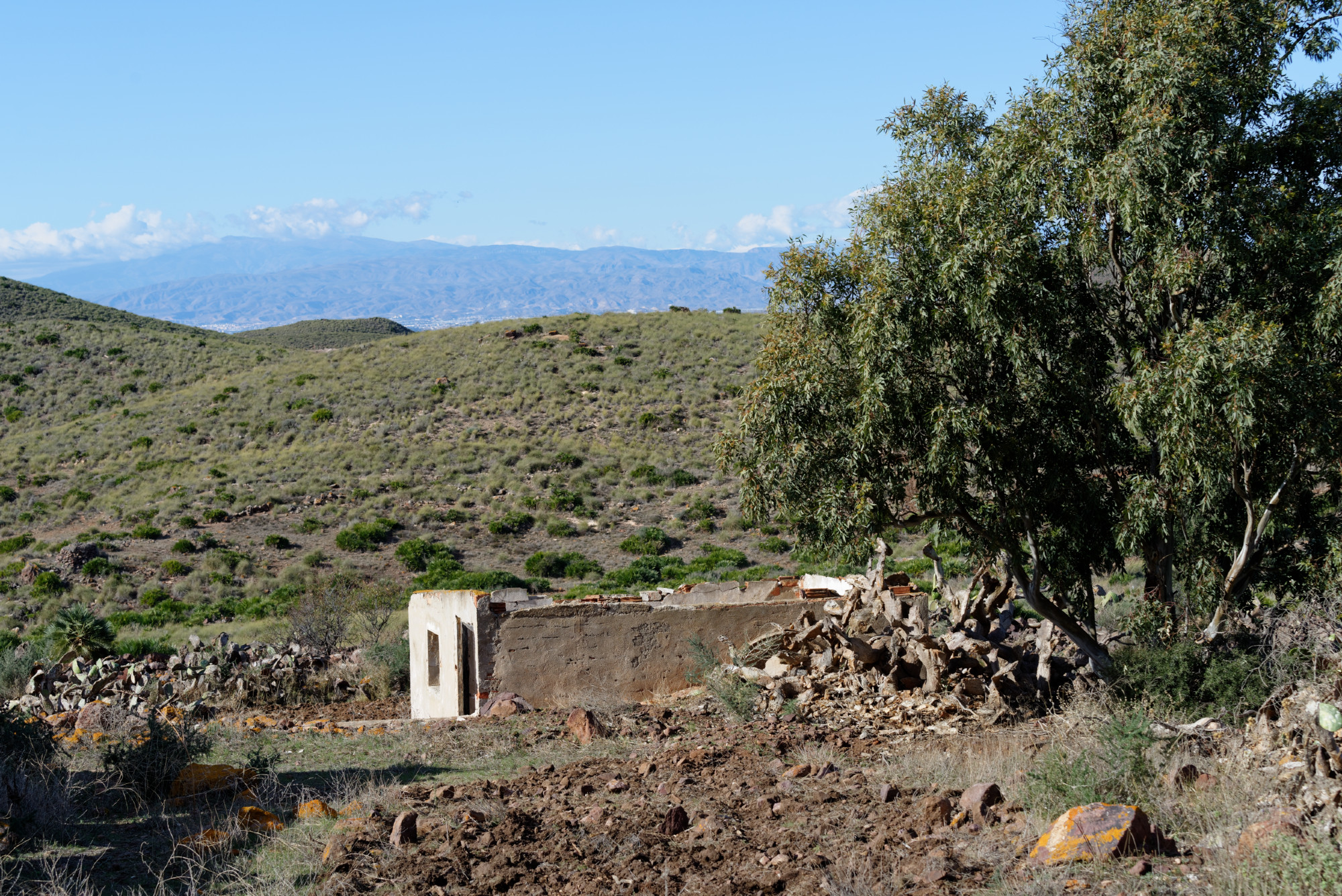 171212-Marche La Boca de los Frailes vers Cerro de Limones (25) (Cabo de Gata-Andalousie)