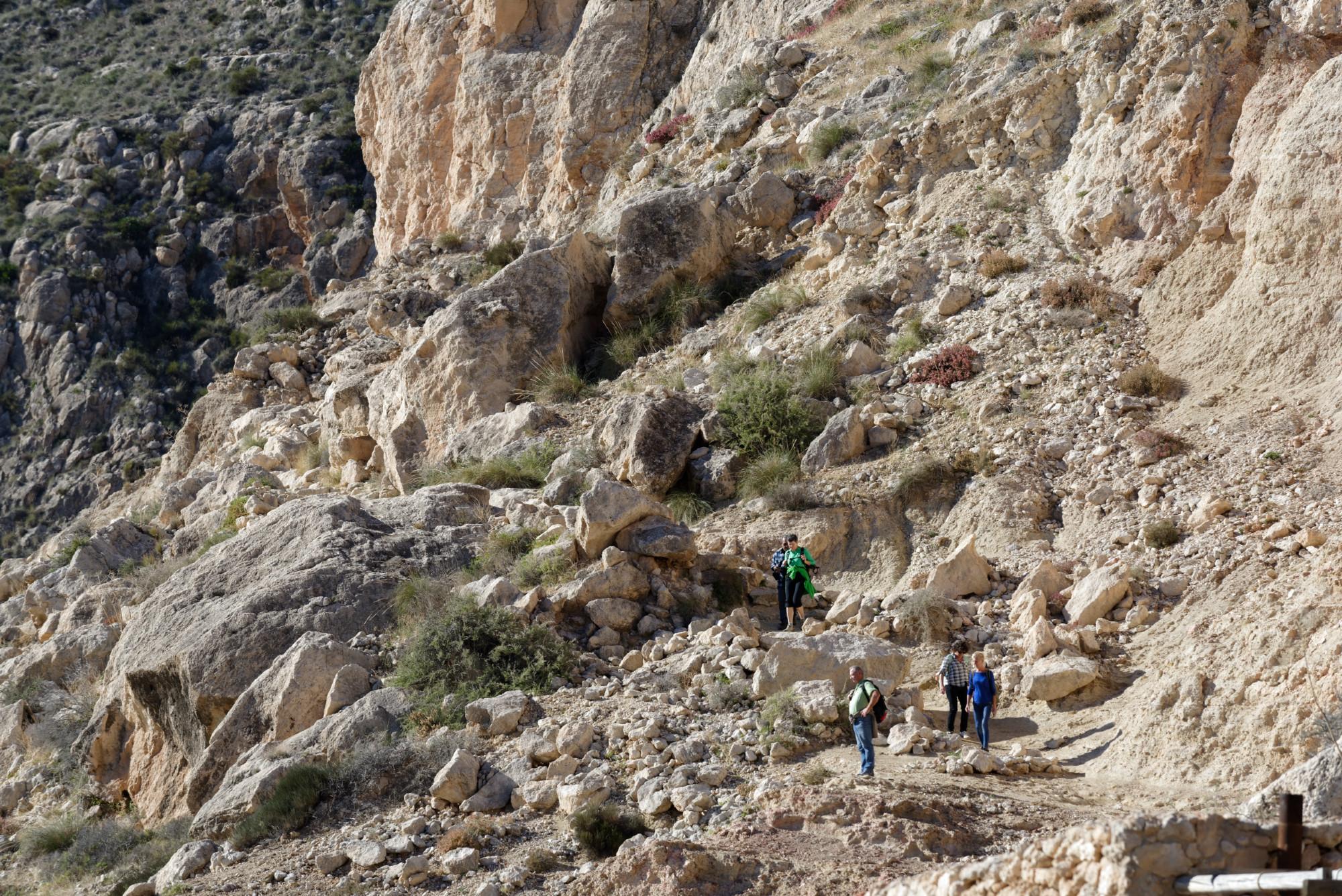 171213-Marche Las Negras-Cala San Pedro-Las Negras (51) (Cabo de Gata-Andalousie)