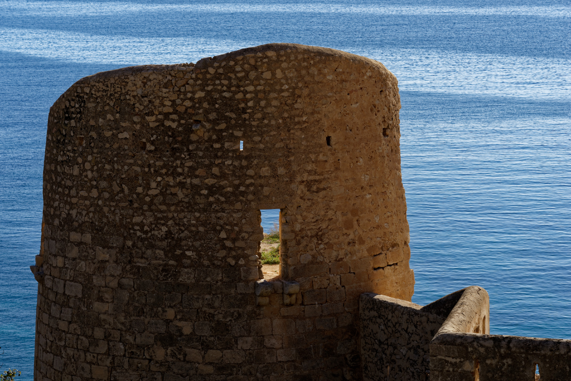 171213-Marche Las Negras-Cala San Pedro-Las Negras (55) (Cabo de Gata-Andalousie)
