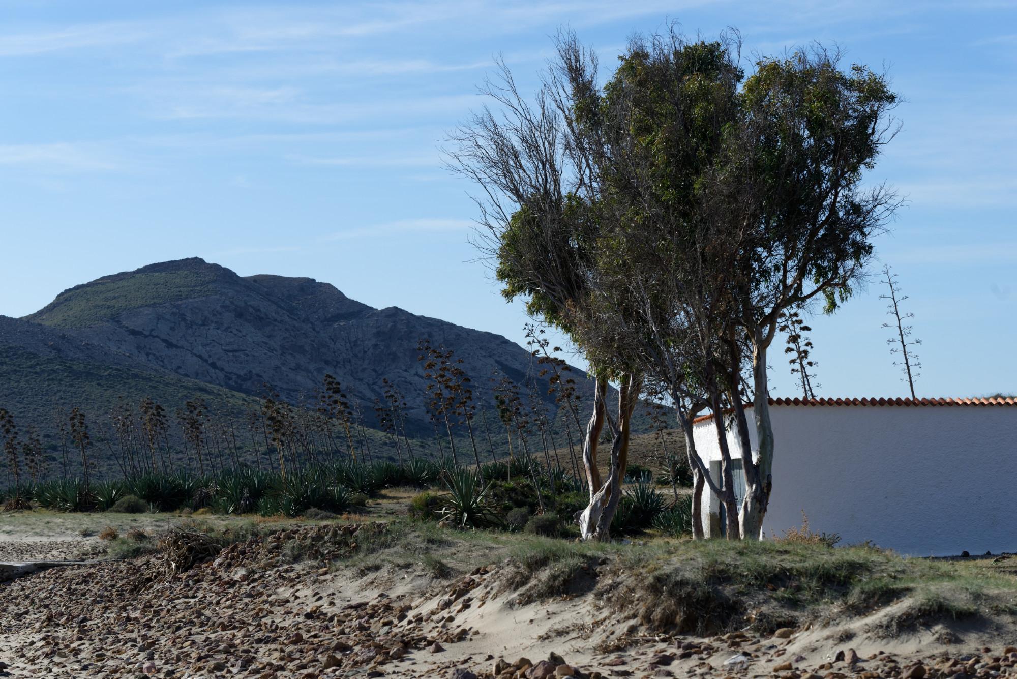 171214-San Jose-Playa de Genoveses (Cabo de Gata-Andalousie) (128)