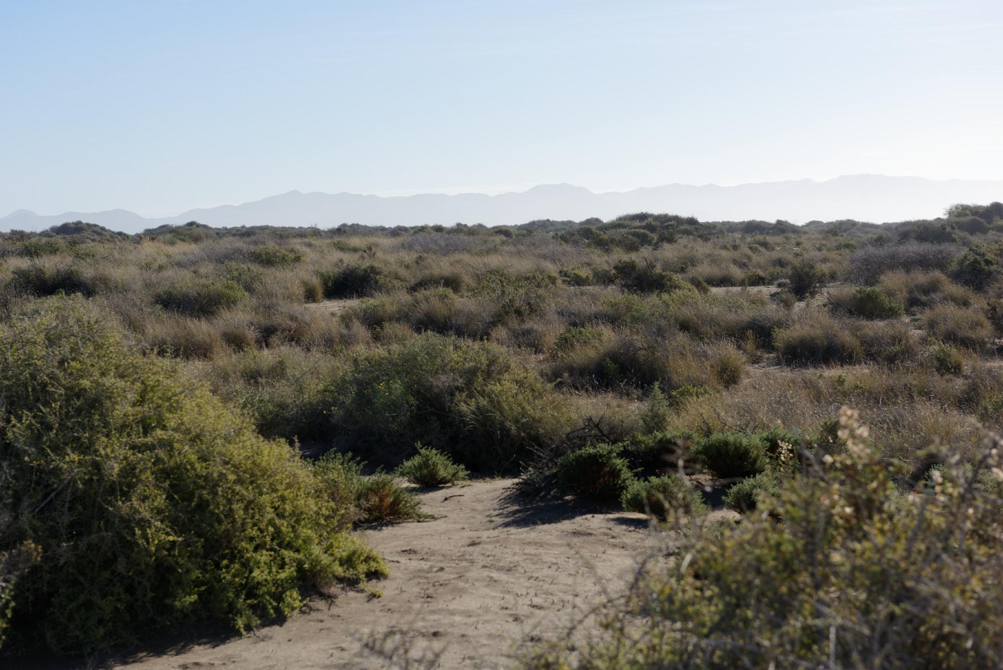 171215-Playa de Torre Garcia y de las Amoladeras (Cabo de Gata - Andalousie) (2)