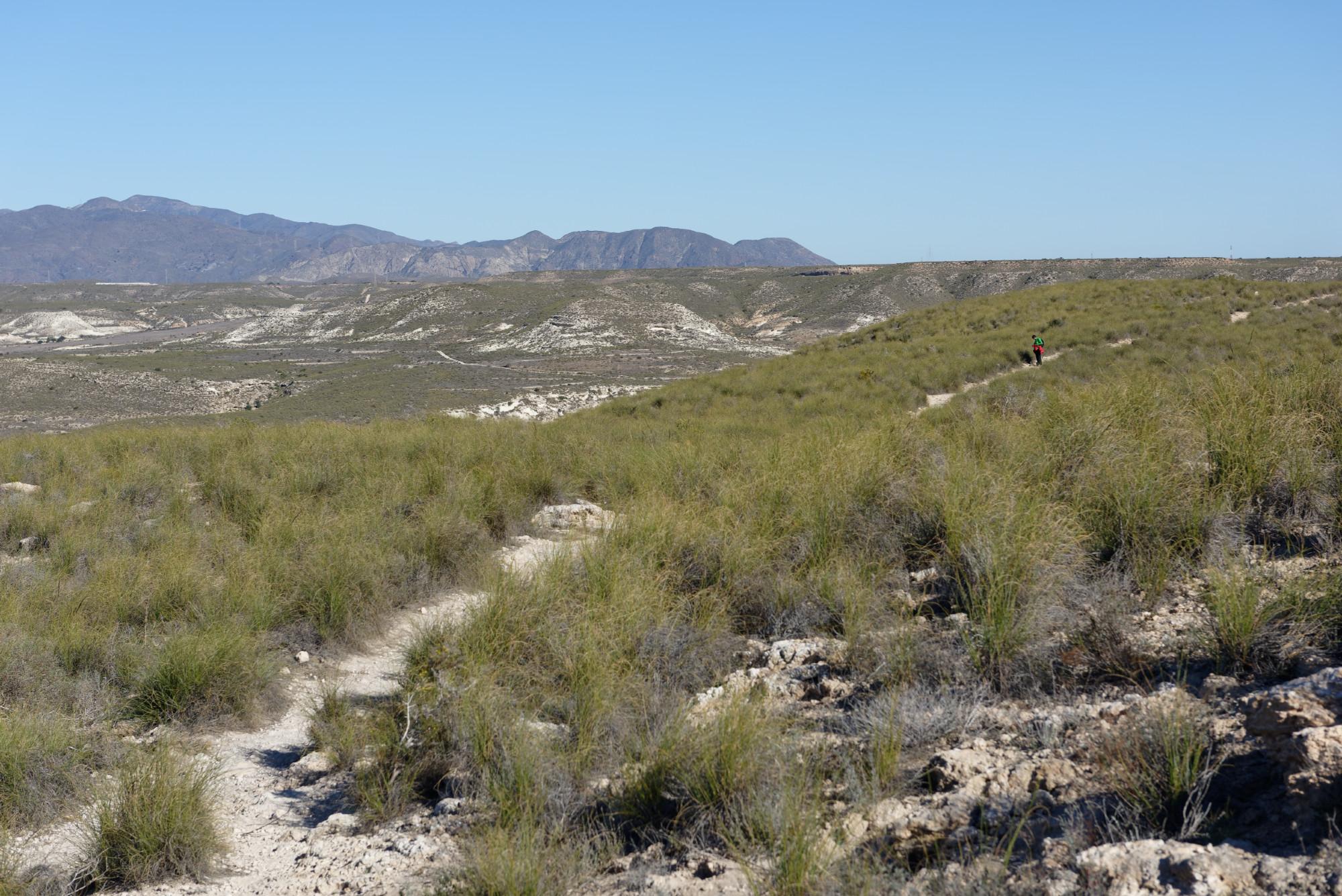 171217-Marche Agua Amarga vers Playa de Enmedio (Cabo de Gata-Andalousie) (28)