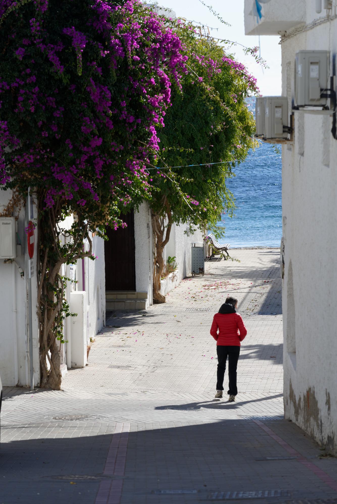 171217-Marche Agua Amarga vers Playa de Enmedio (Cabo de Gata-Andalousie) (55)