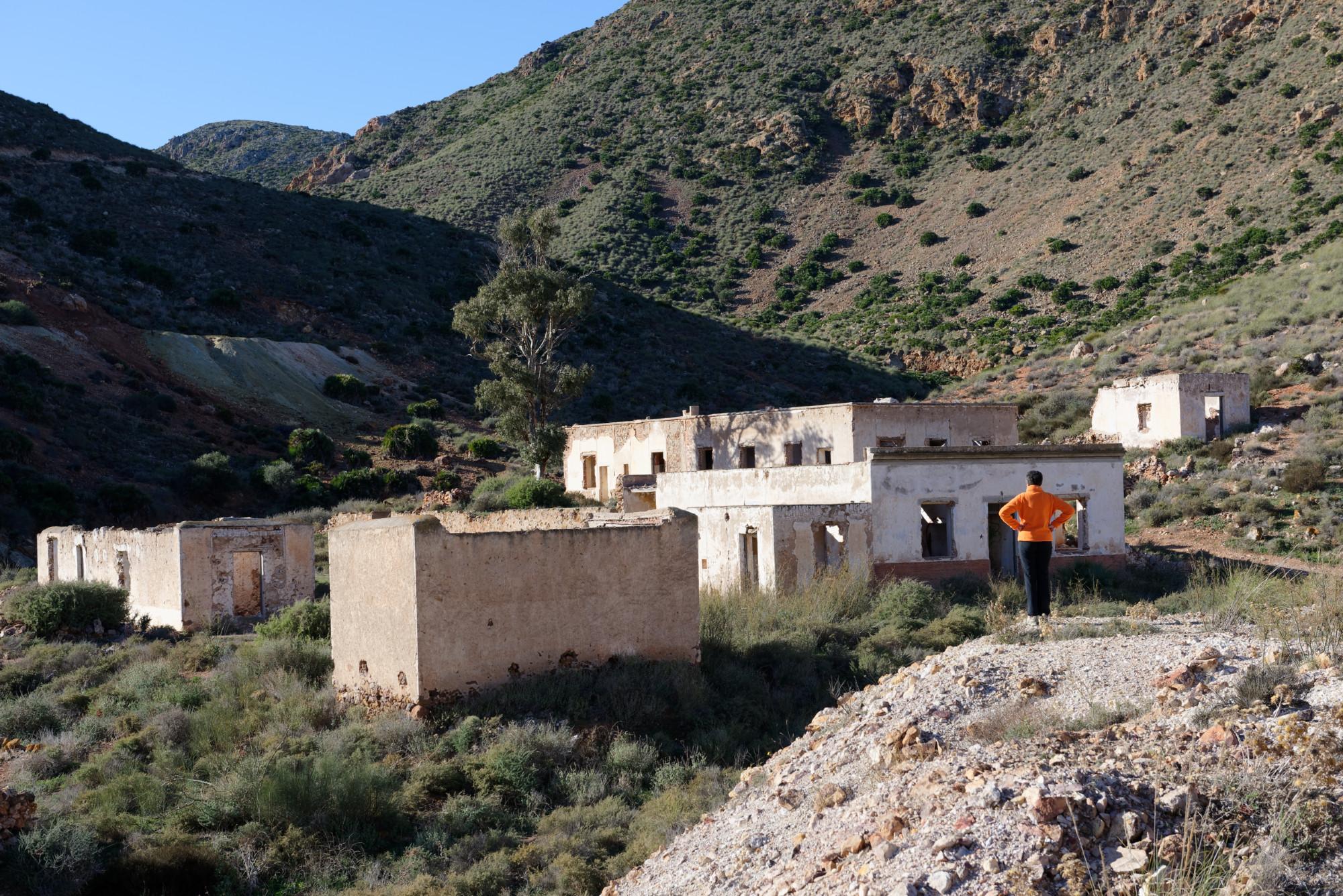 171218-Piste Rodalquilar vers Cortijo del Fraile (Cabo de Gata-Andalousie) (22)